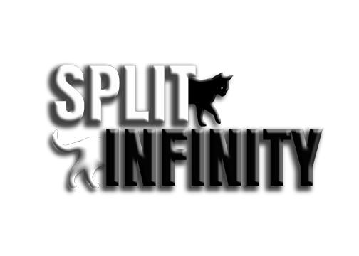 split infinity logo.jpg