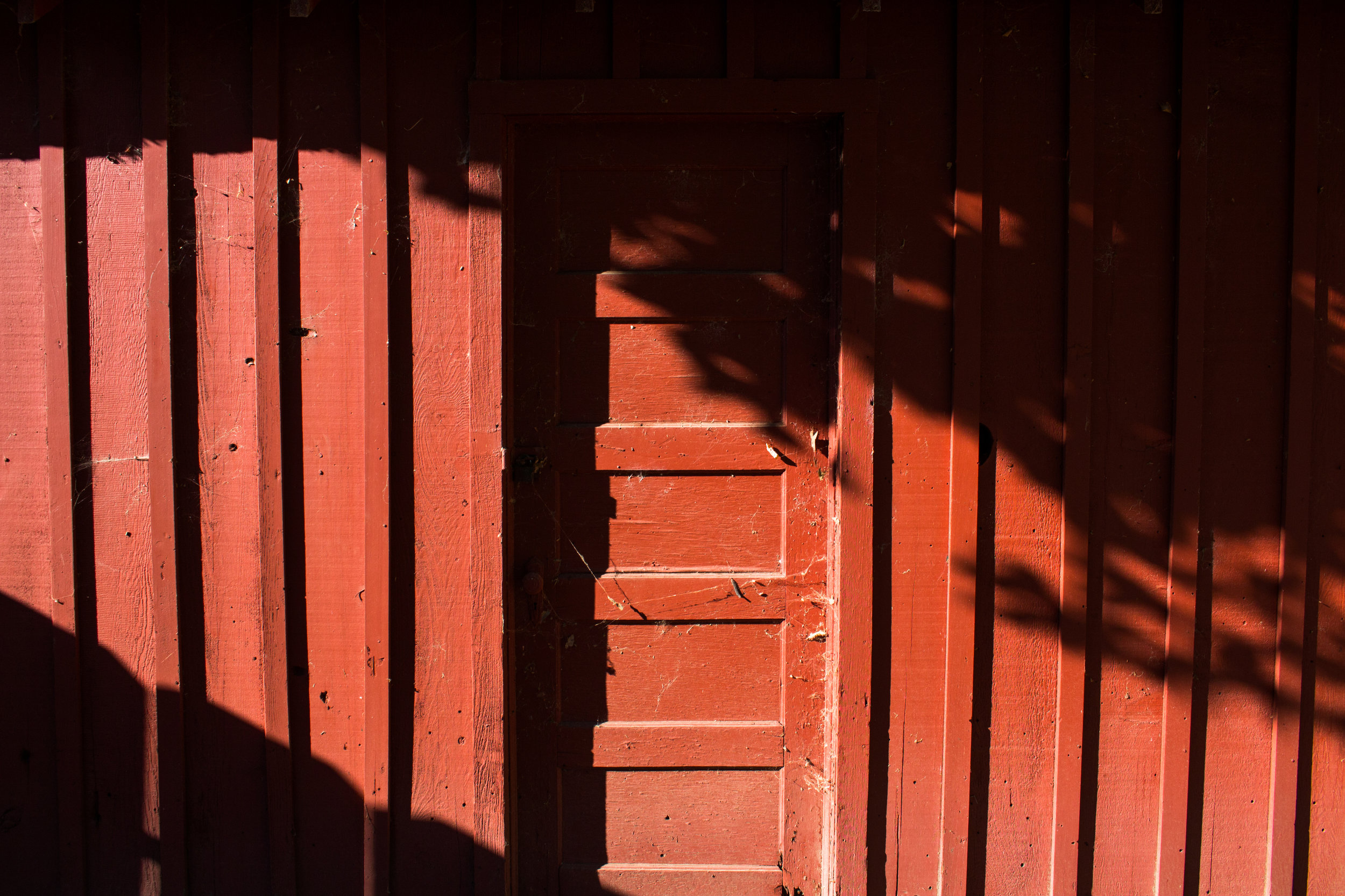 brightreddoor.jpg