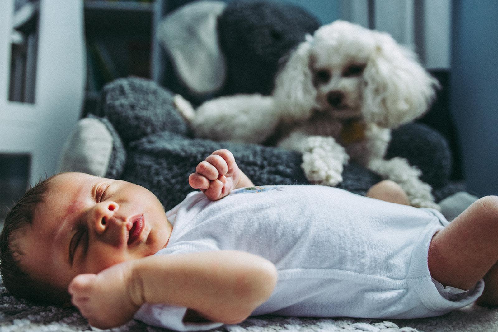 baby+vonier+newborn-18.jpg
