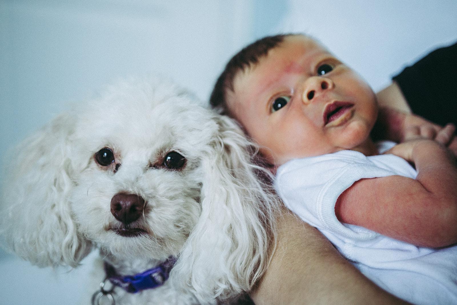 baby+vonier+newborn-19.jpg