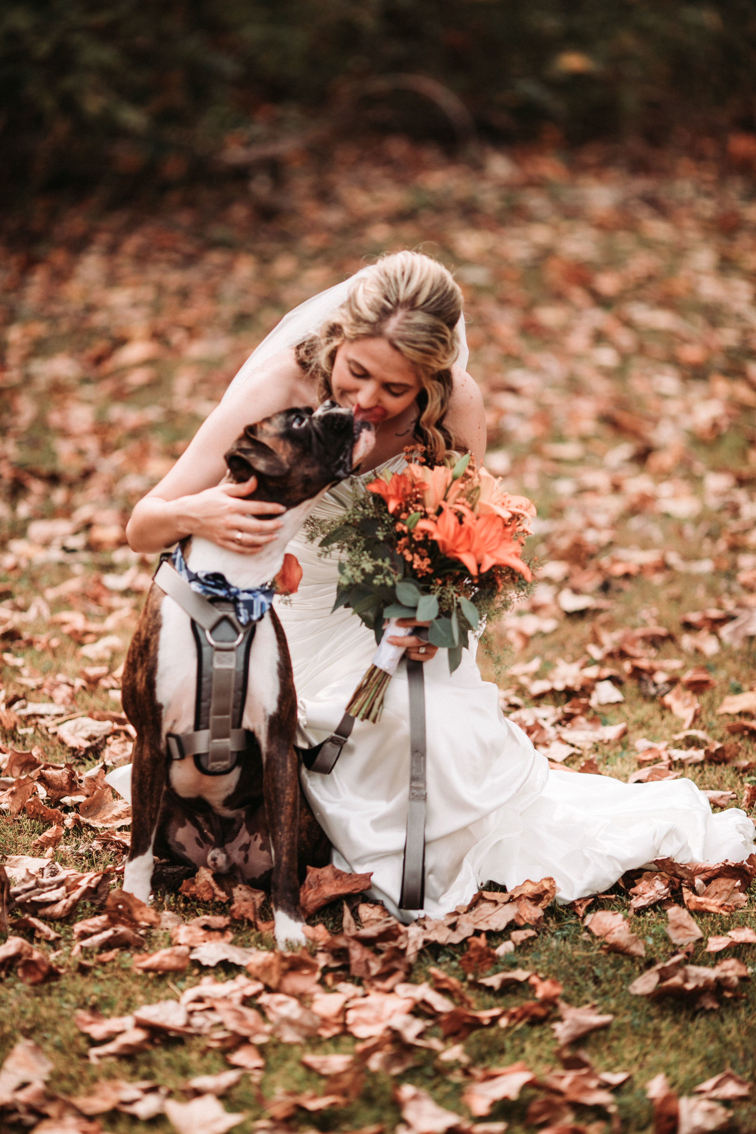brown county state park fall wedding-28.jpg