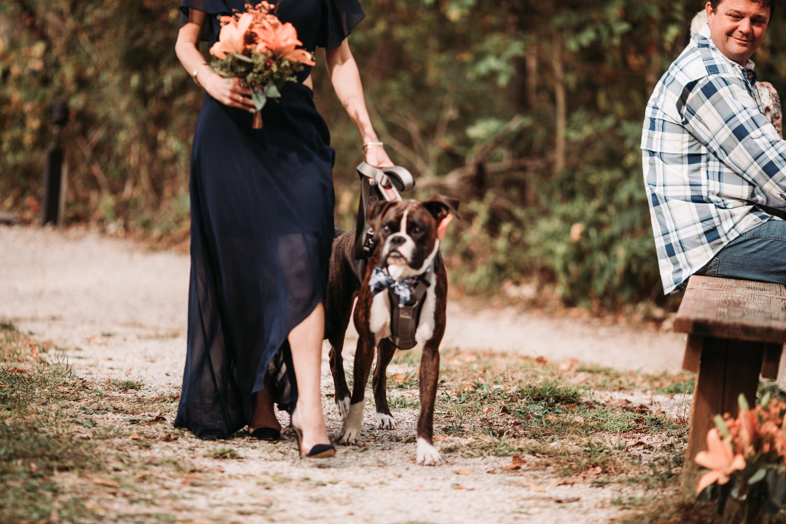 brown county state park fall wedding-58.jpg