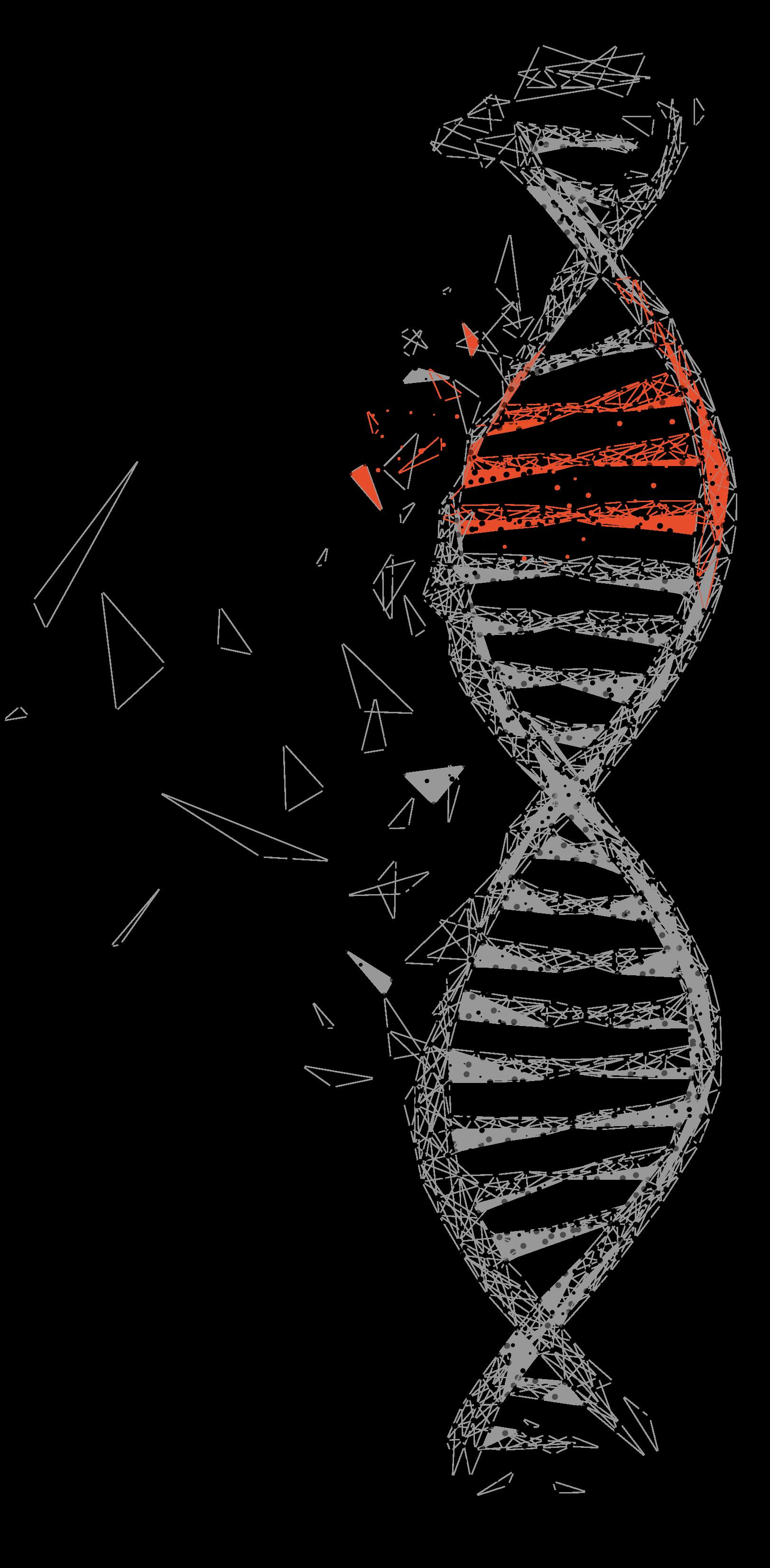 Gene Edit Vector.png