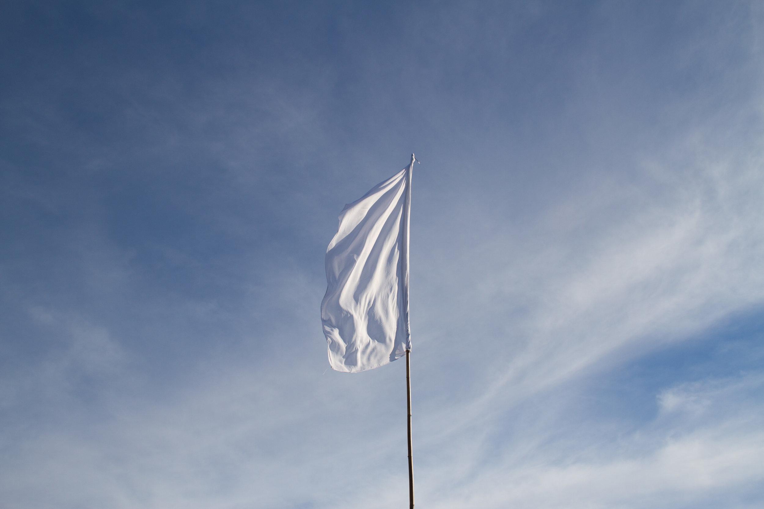 Flag, Parihaka, 2018