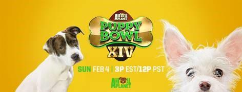 Animal Planet Puppy Bowl XIV - Google Fiber