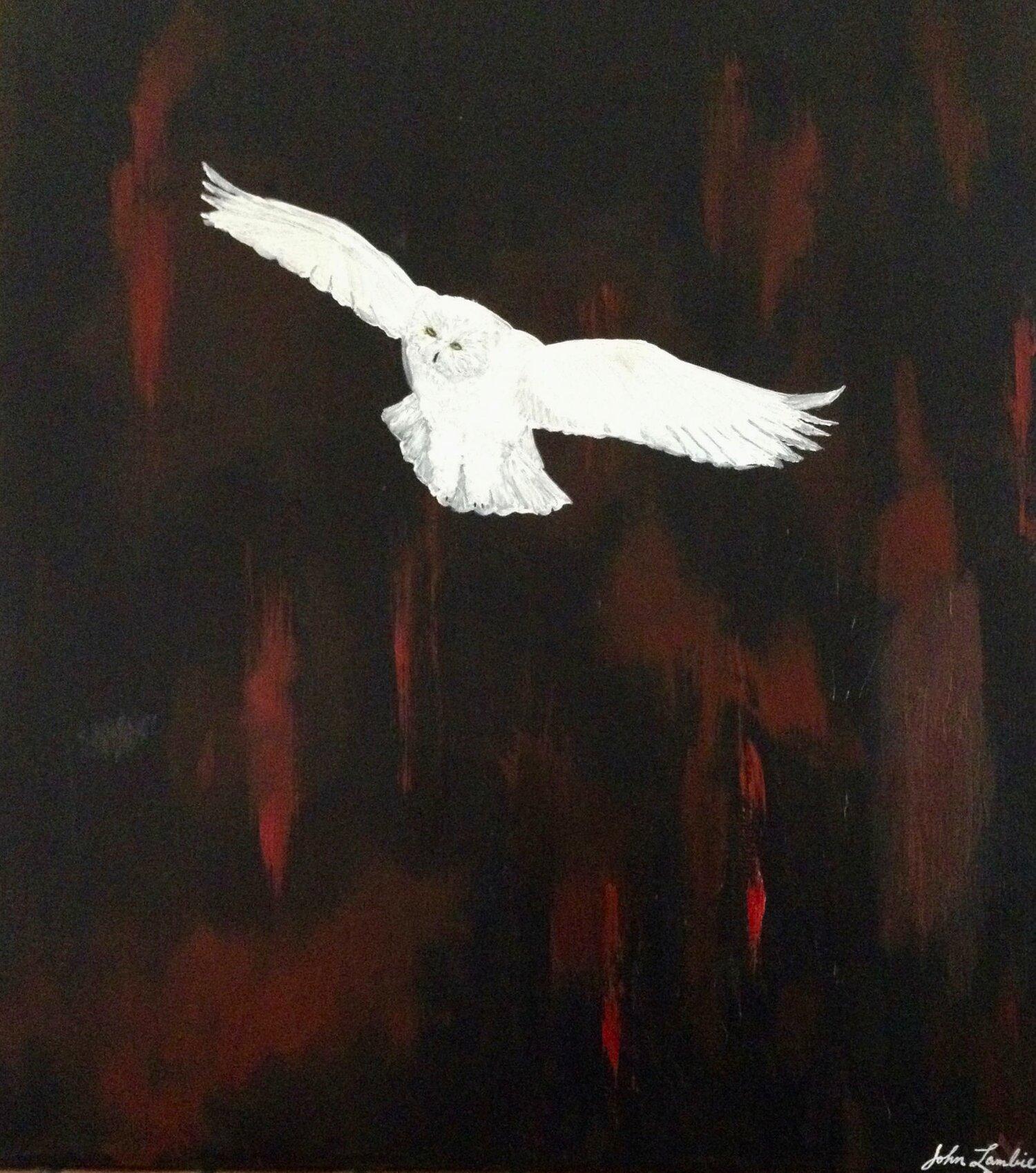 White Owl, Oil