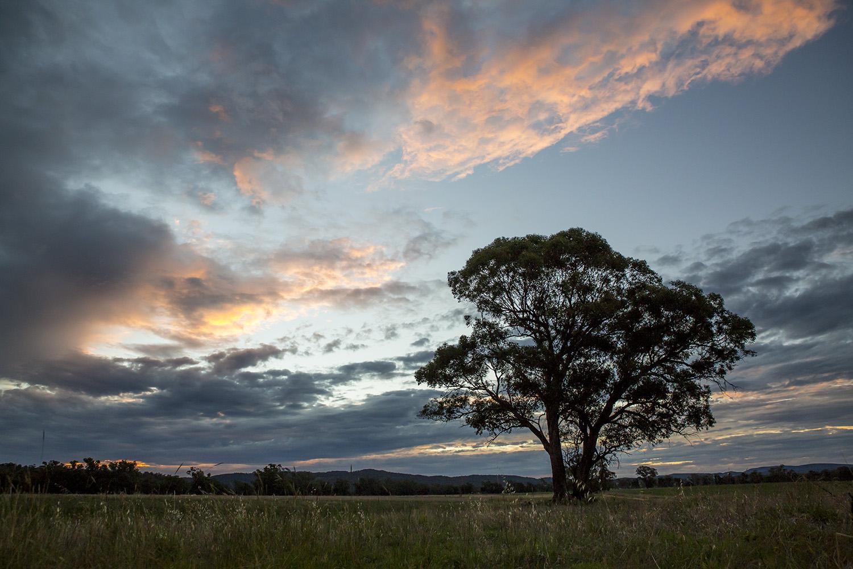 Sunset Eugowra