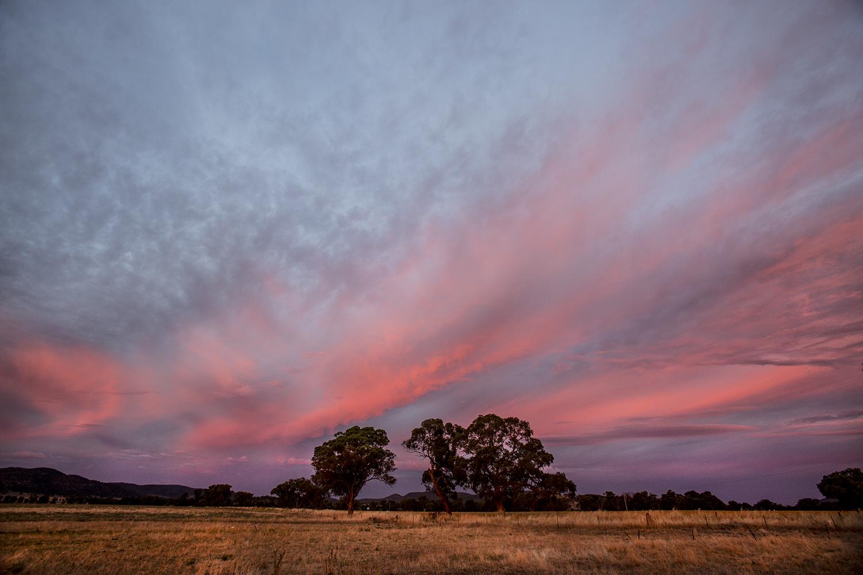 Eulimore Sunset - Eugowra
