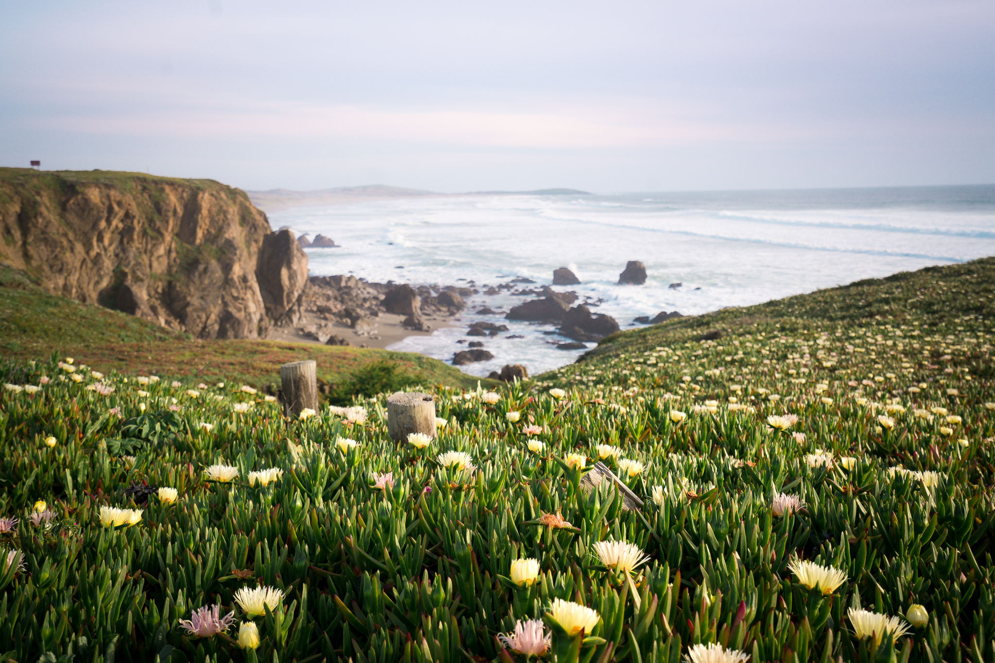 Views from the road along Sonoma Coast State Park.