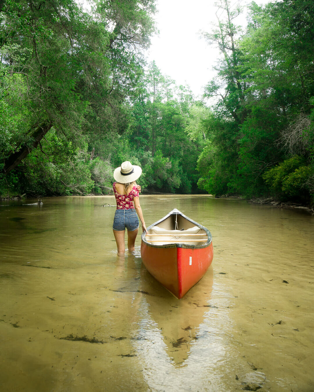 Canoeing down Blackwater River is the perfect way to spend a hot afternoon.