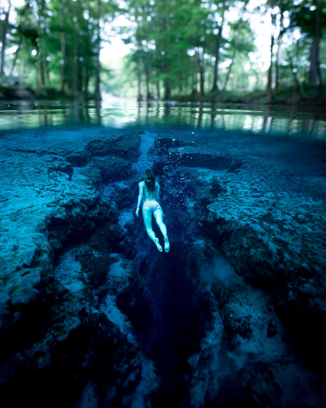 Free diving in Ginnie Springs.