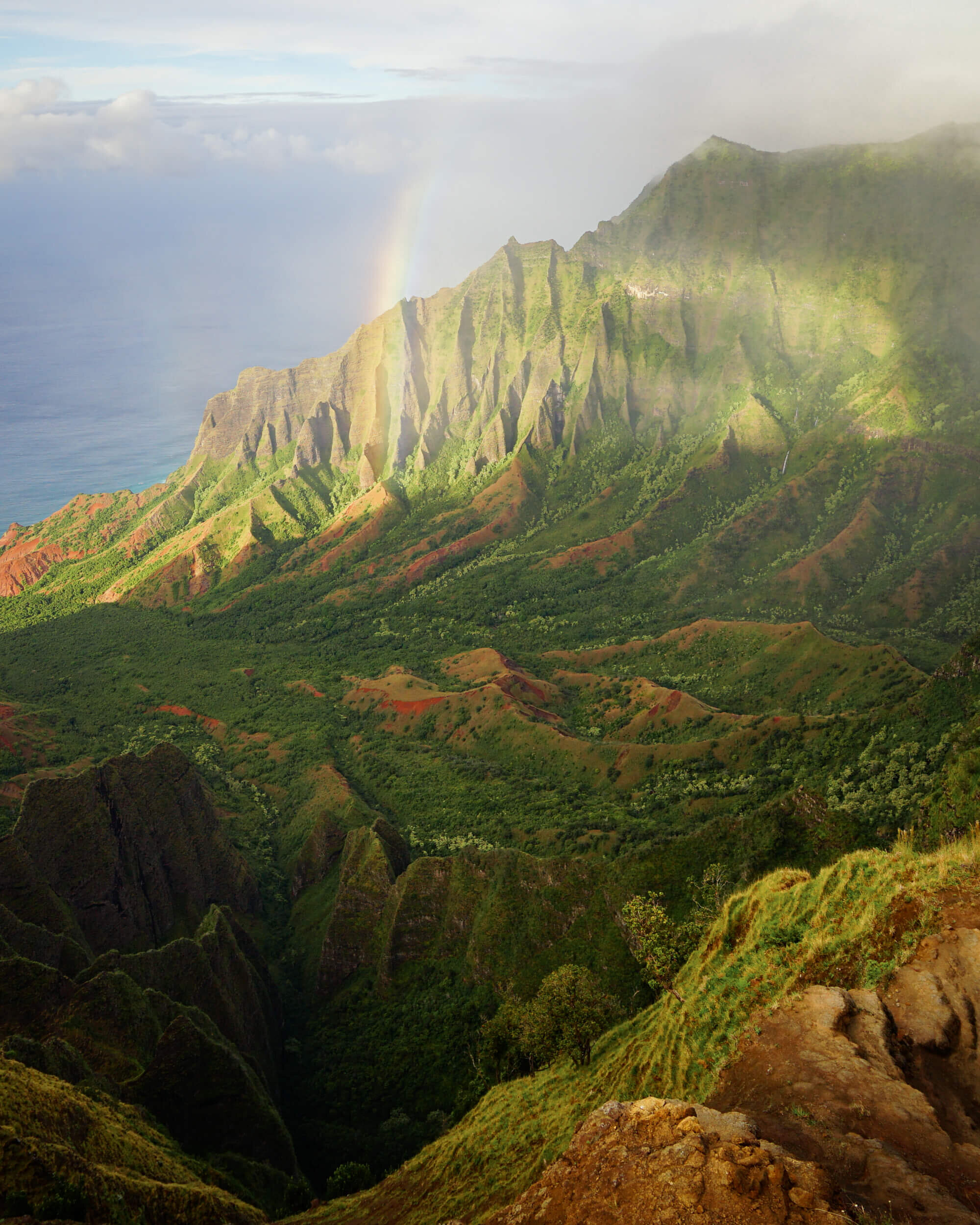 The view from the Pu'u O Kila Lookout.