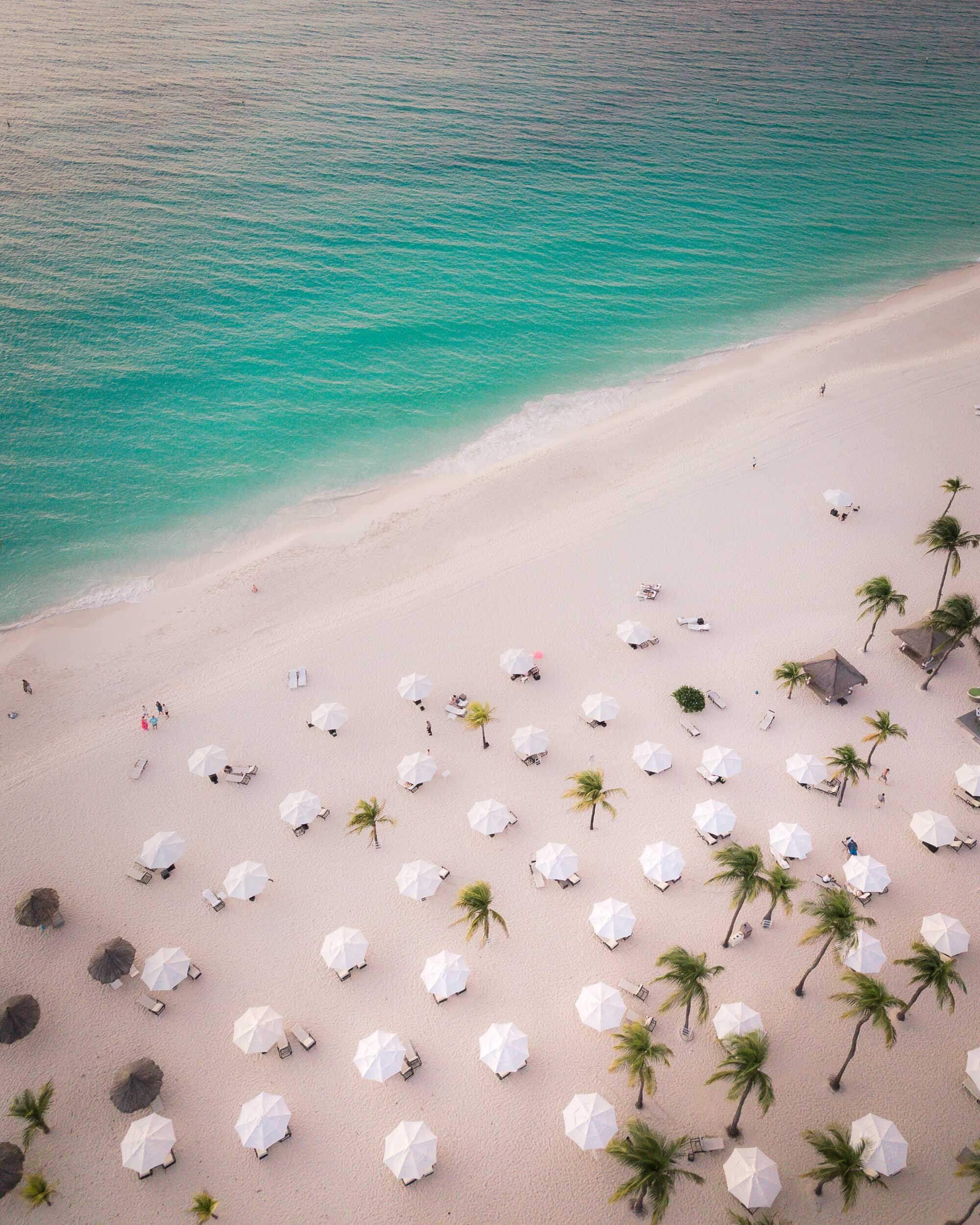 """Long before catch phrases like """"eco-tourism"""" and """"eco-resort"""" went main stream  Bucuti & Tara Beach Resort  on Aruba wanted to promote  environmentally   conscious  luxury. The result is North America's first CarbonNeutral® resort hotel."""