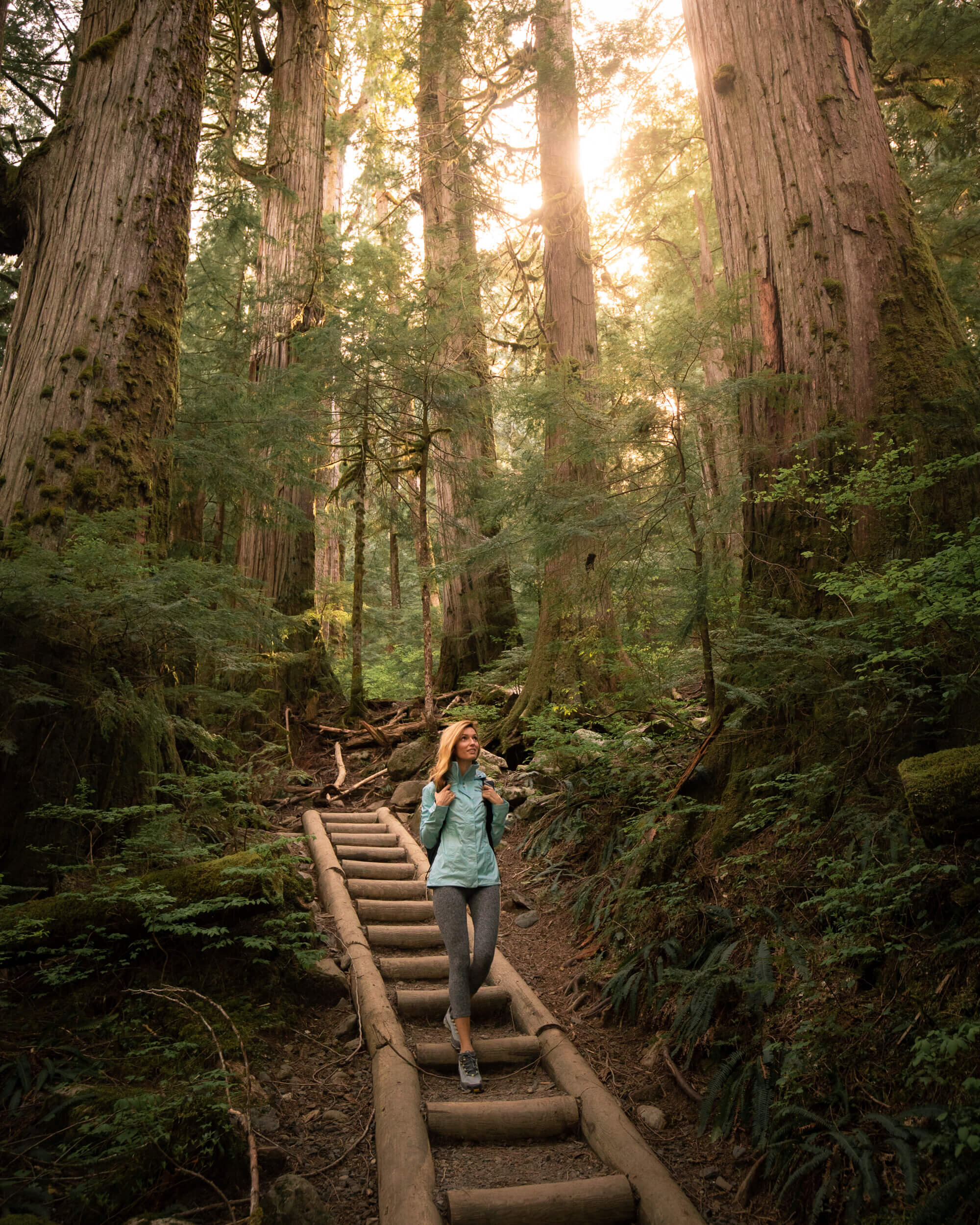 The beautiful trail to Lake 22. Photo by  Kyle Kotajarvi