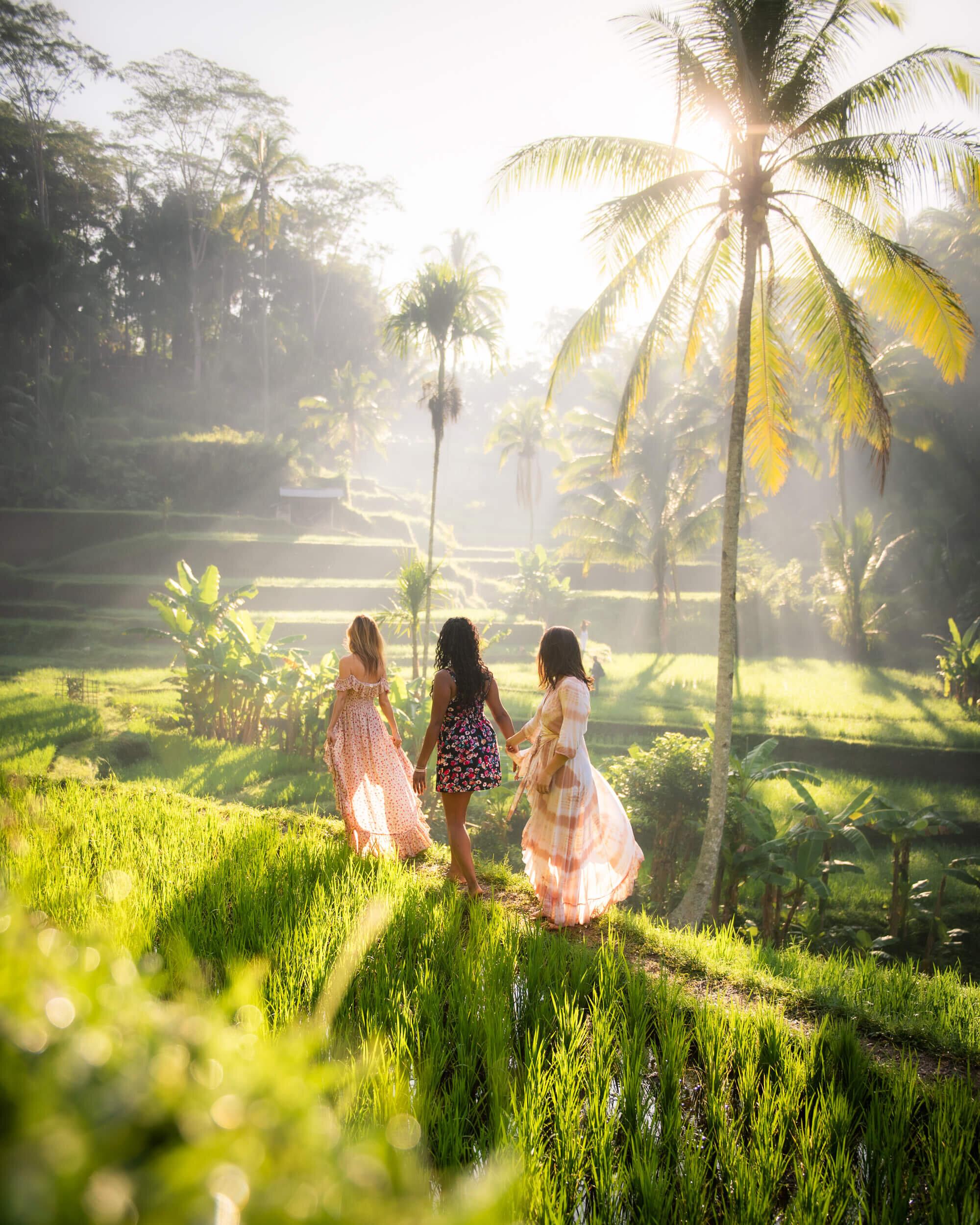 Rice Terraces in Bali. Photo by:  Jess Bonde