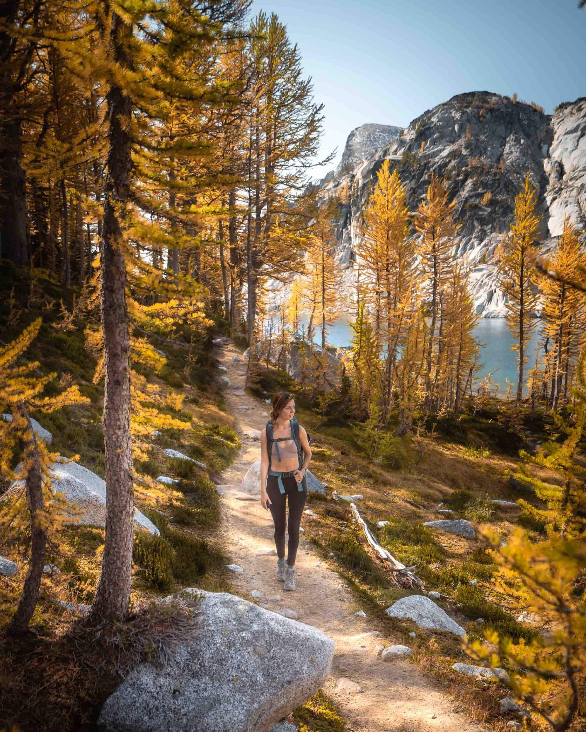 In Mid-October the trail through the Core Enchantment Zone is lined with golden Larches.