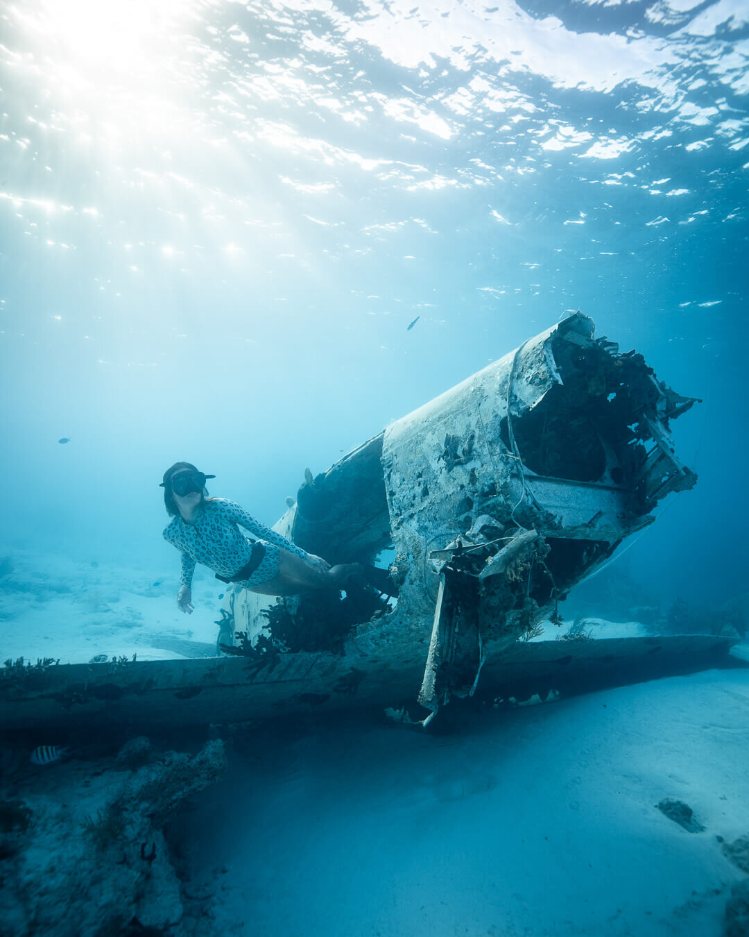 "Swimming through the plane wreck near ""The Aquarium."" Photos by  Quin Schrock ."