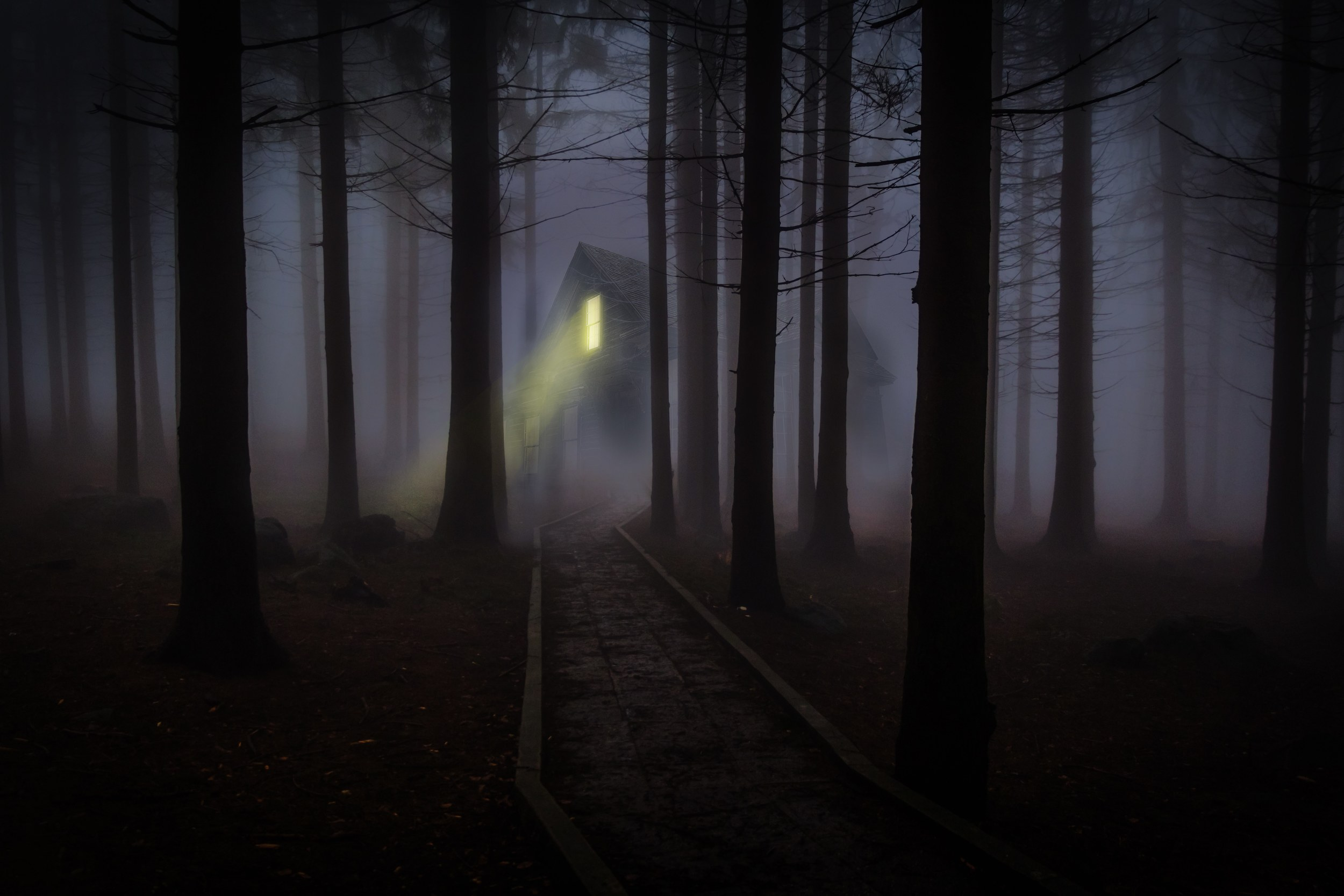 haunted-camping-forest