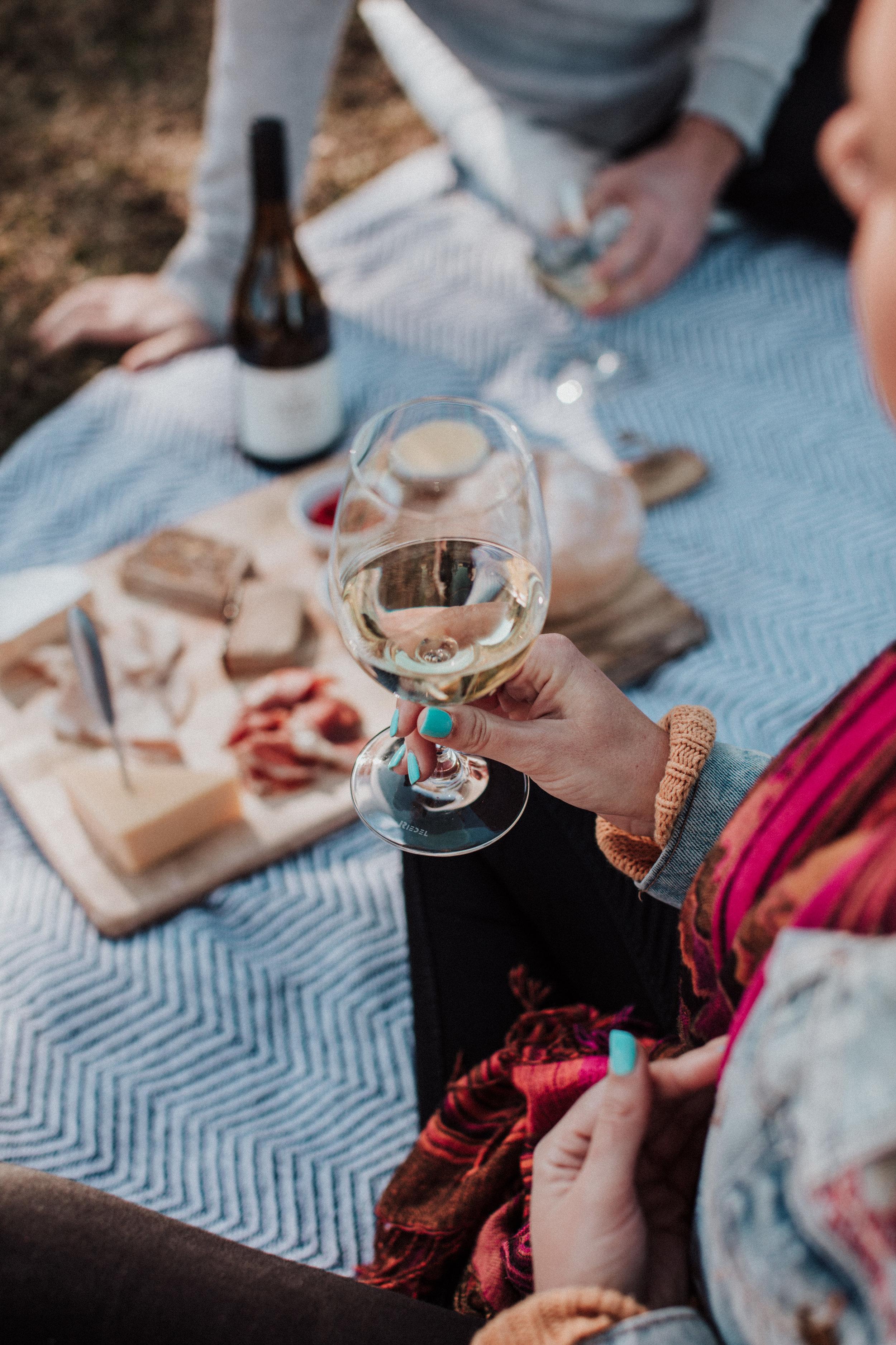 picnic-4013.jpg
