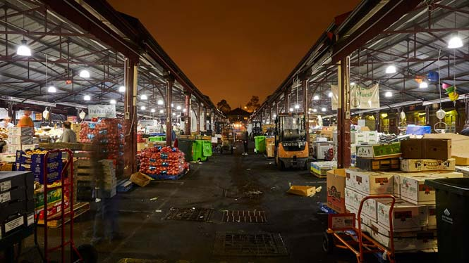 5am A and B Shed | Operations: back of house