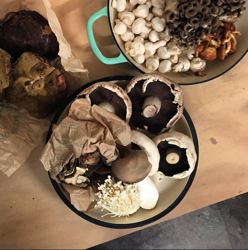 Fresh market mushrooms