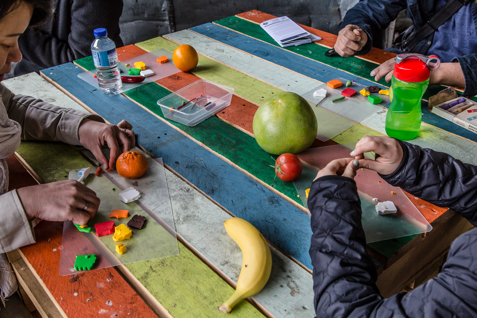 People making miniature fruits as part of Isobel Knowles and Van Sowerwine's model-making workshop. Photo by Bryony Jackson.