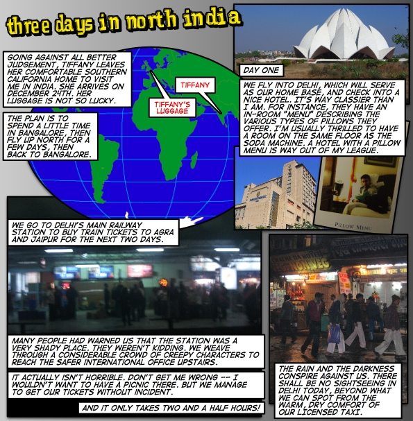 Three Days in North India (p.1)