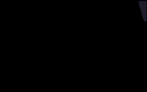 Real_New_Logo-INSIGHTS_3.png