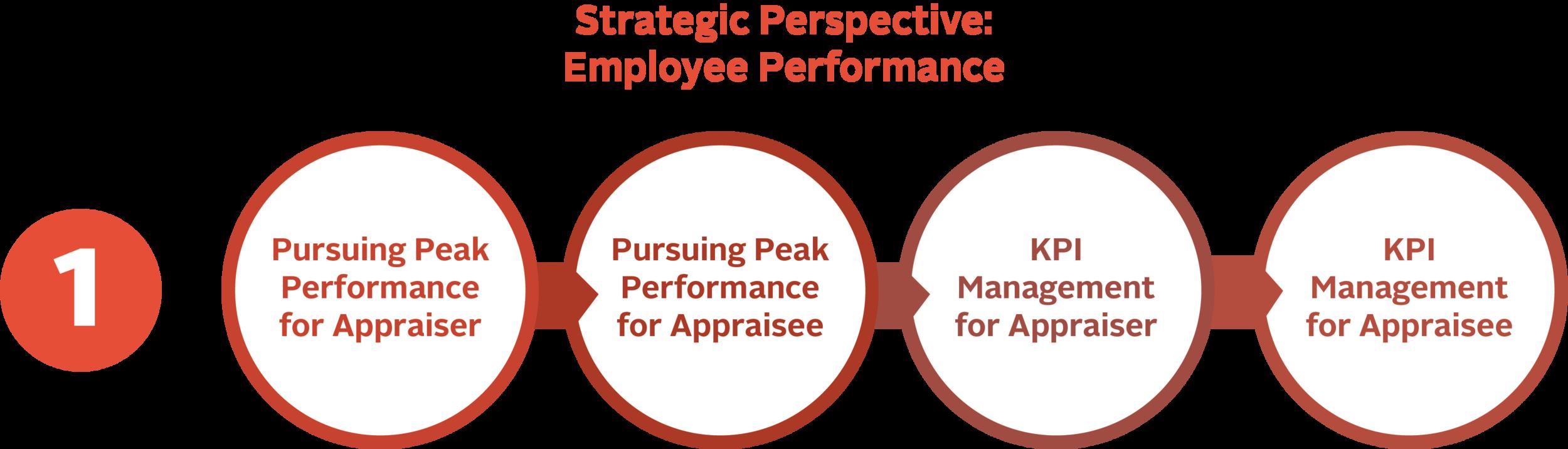 Strategic Perspective: Employee Performance