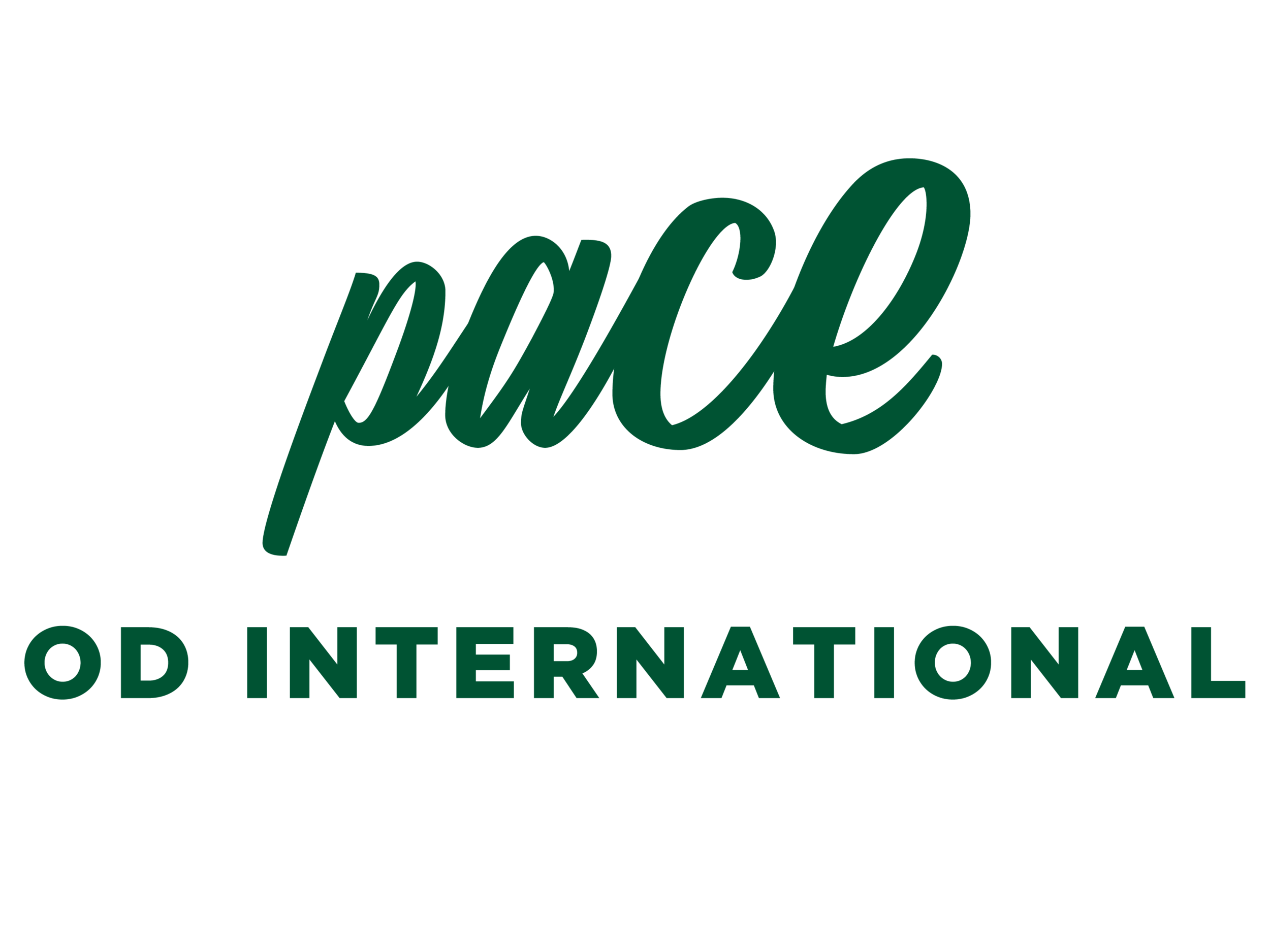 Pace 2019_ODI_Colour-01.png
