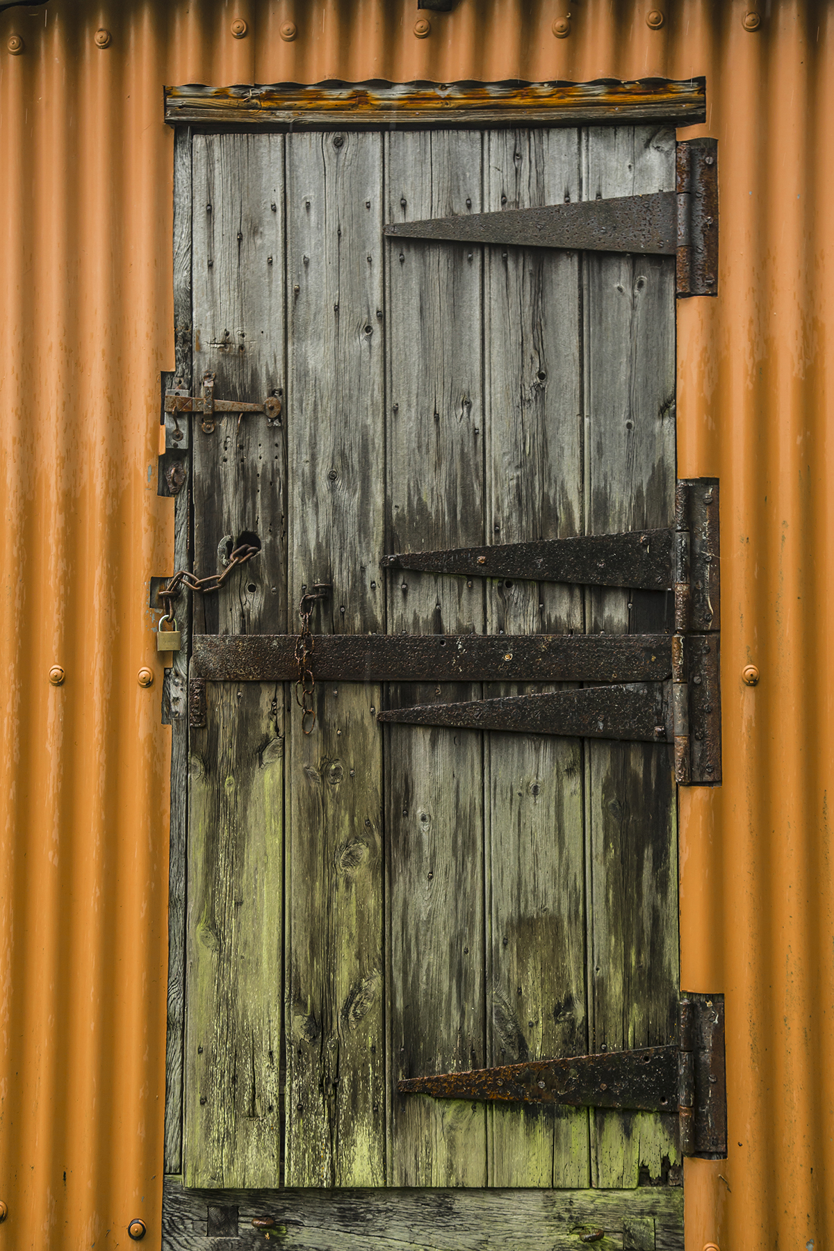 WealdDownland_RG135.jpg