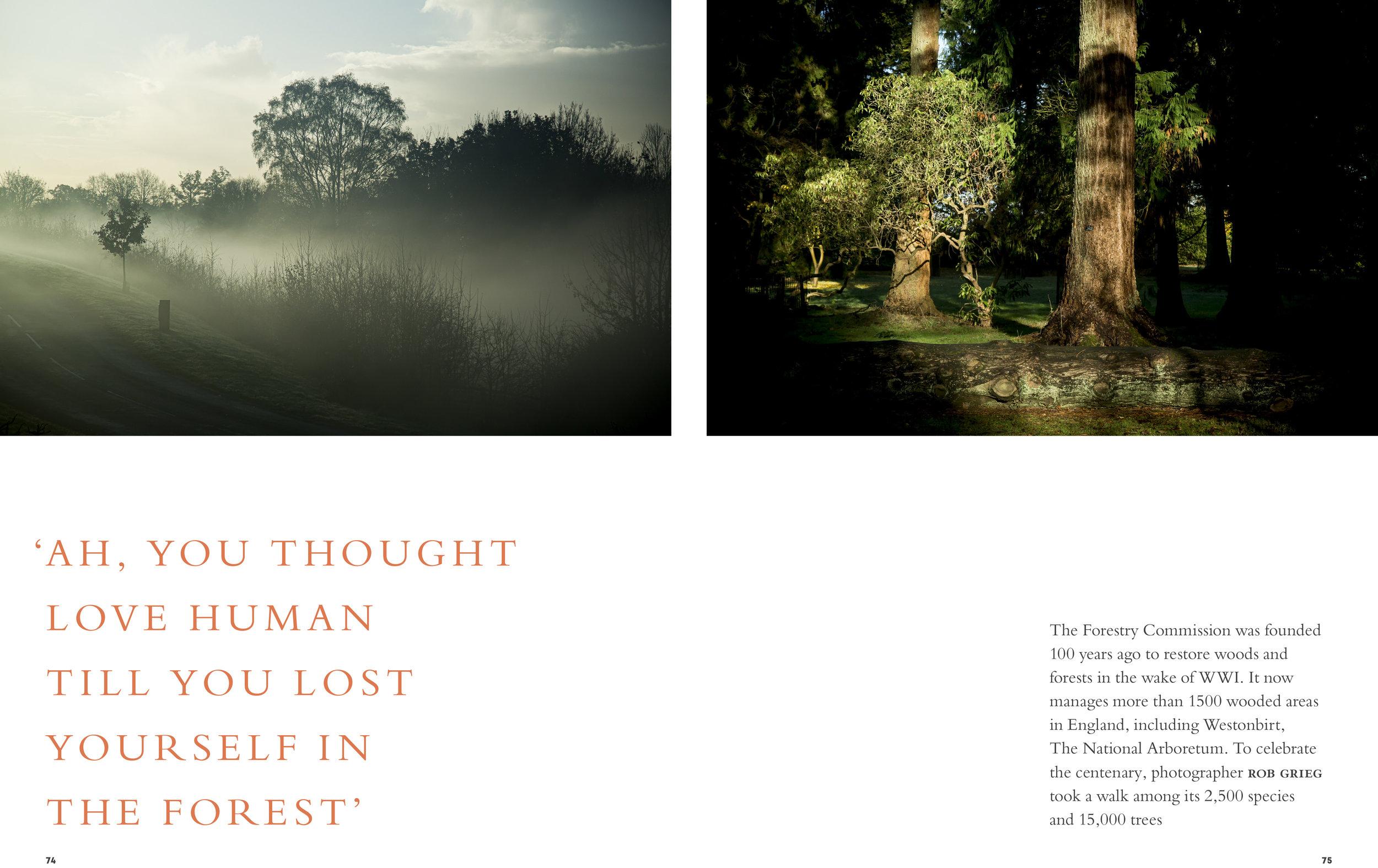 BloomMag_Issue4_Trees-1.jpg