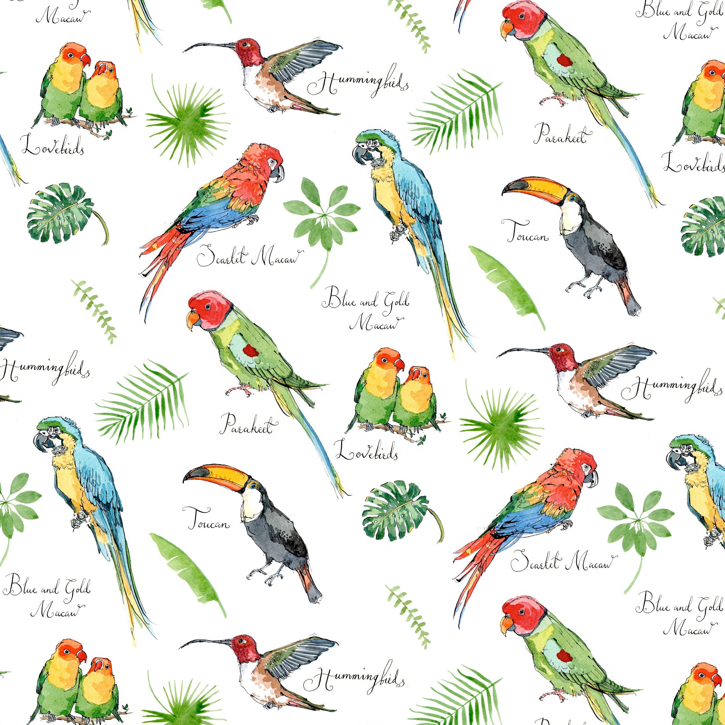 tropicalbirds.jpg
