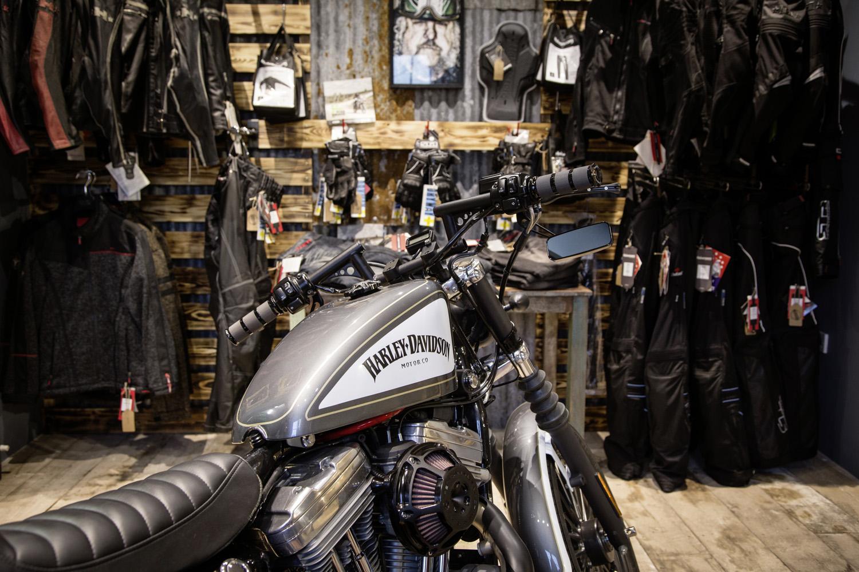 Harley weird background.jpg