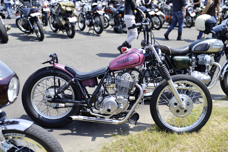 Pink bike.jpg