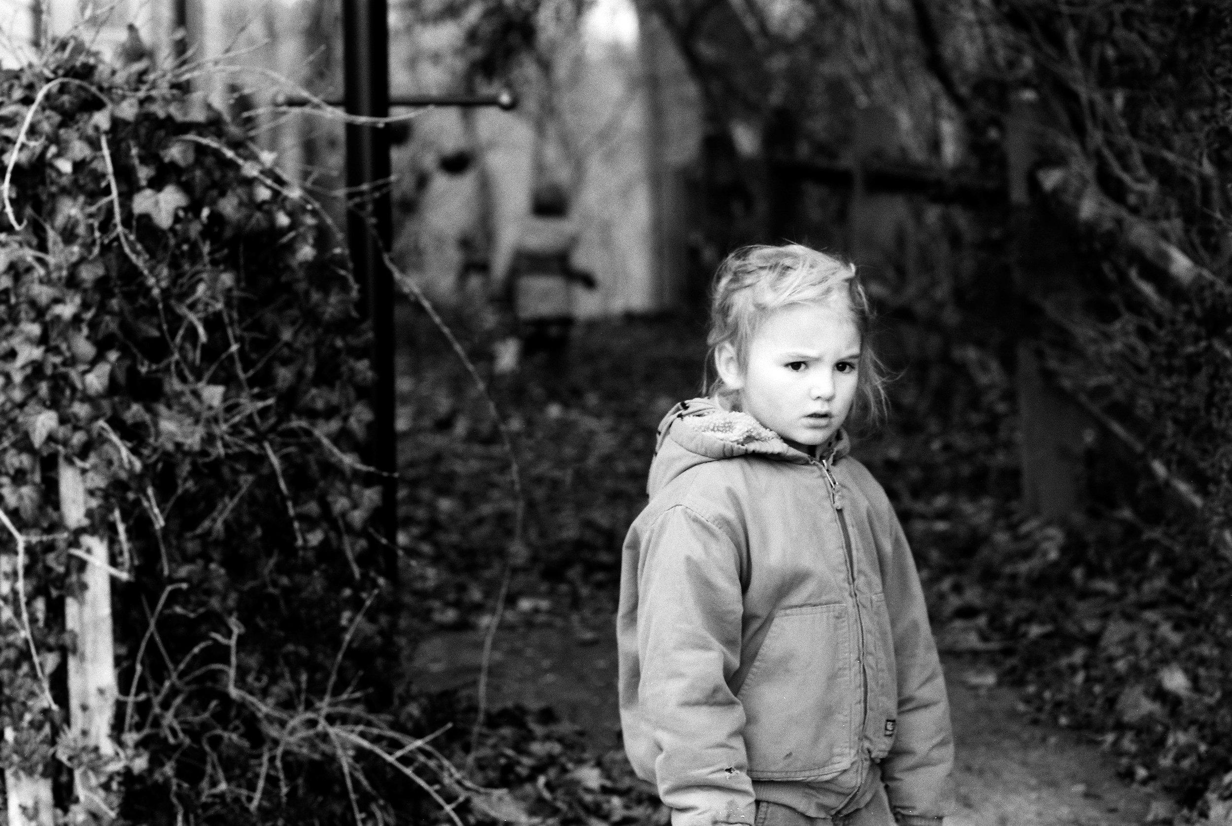 february-film-lifestyle arlo in the yard.jpg