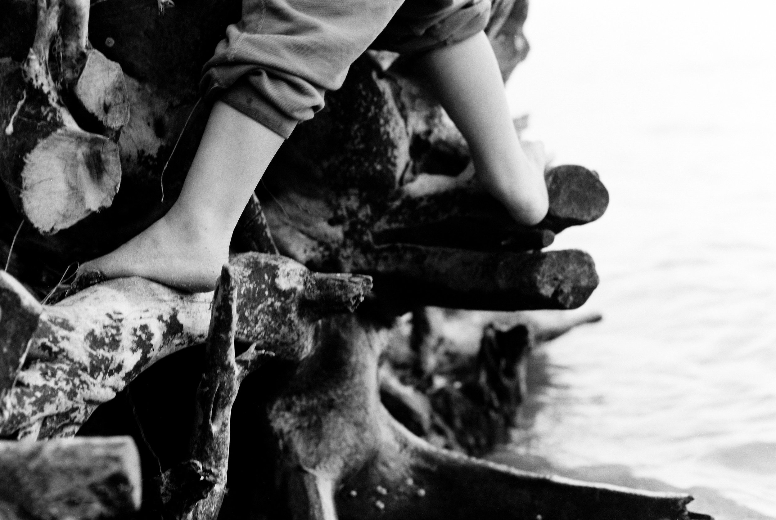 february-film-lifestyle brownies beach fallen tree.jpg