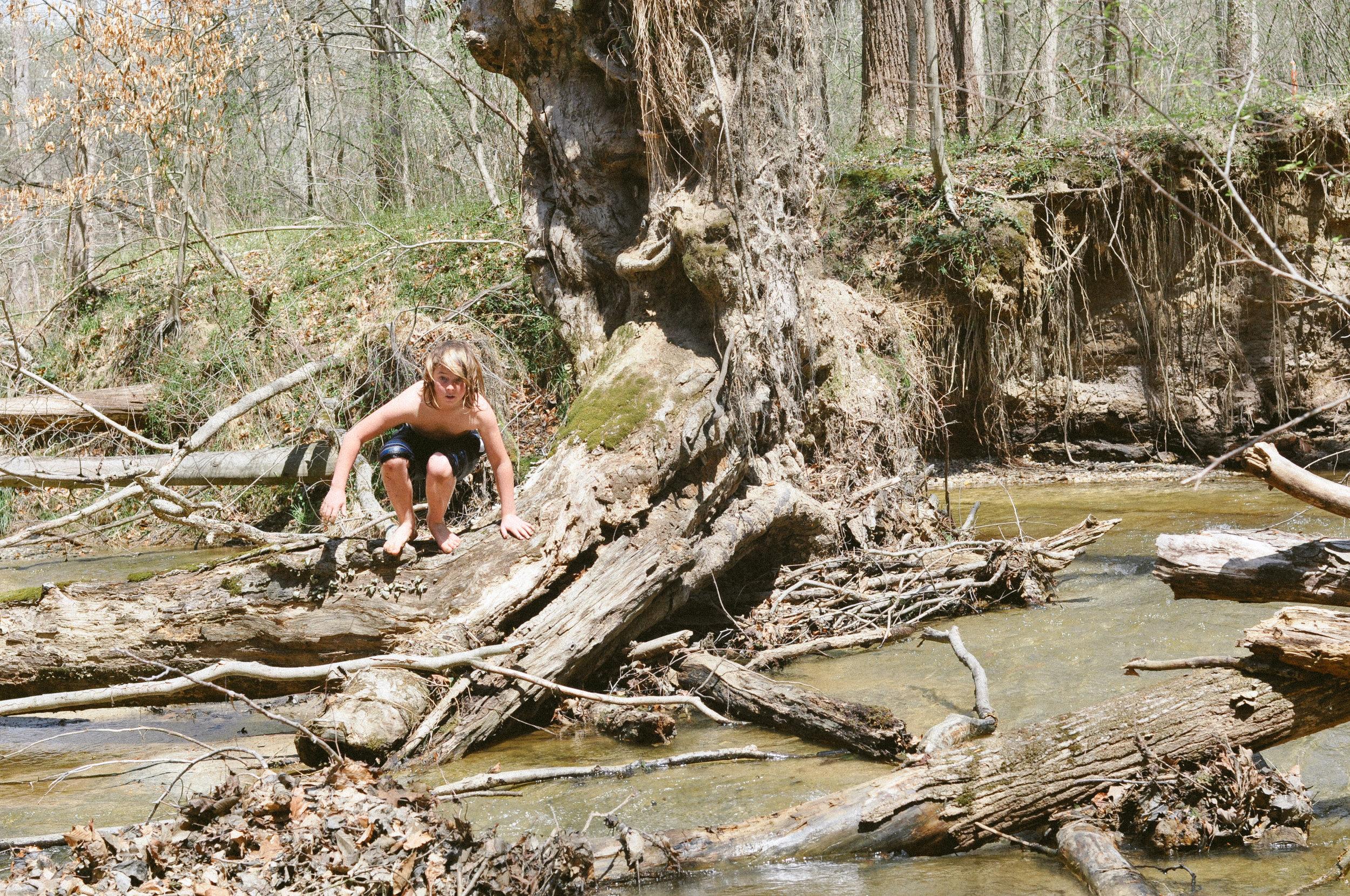creek day 3.jpg