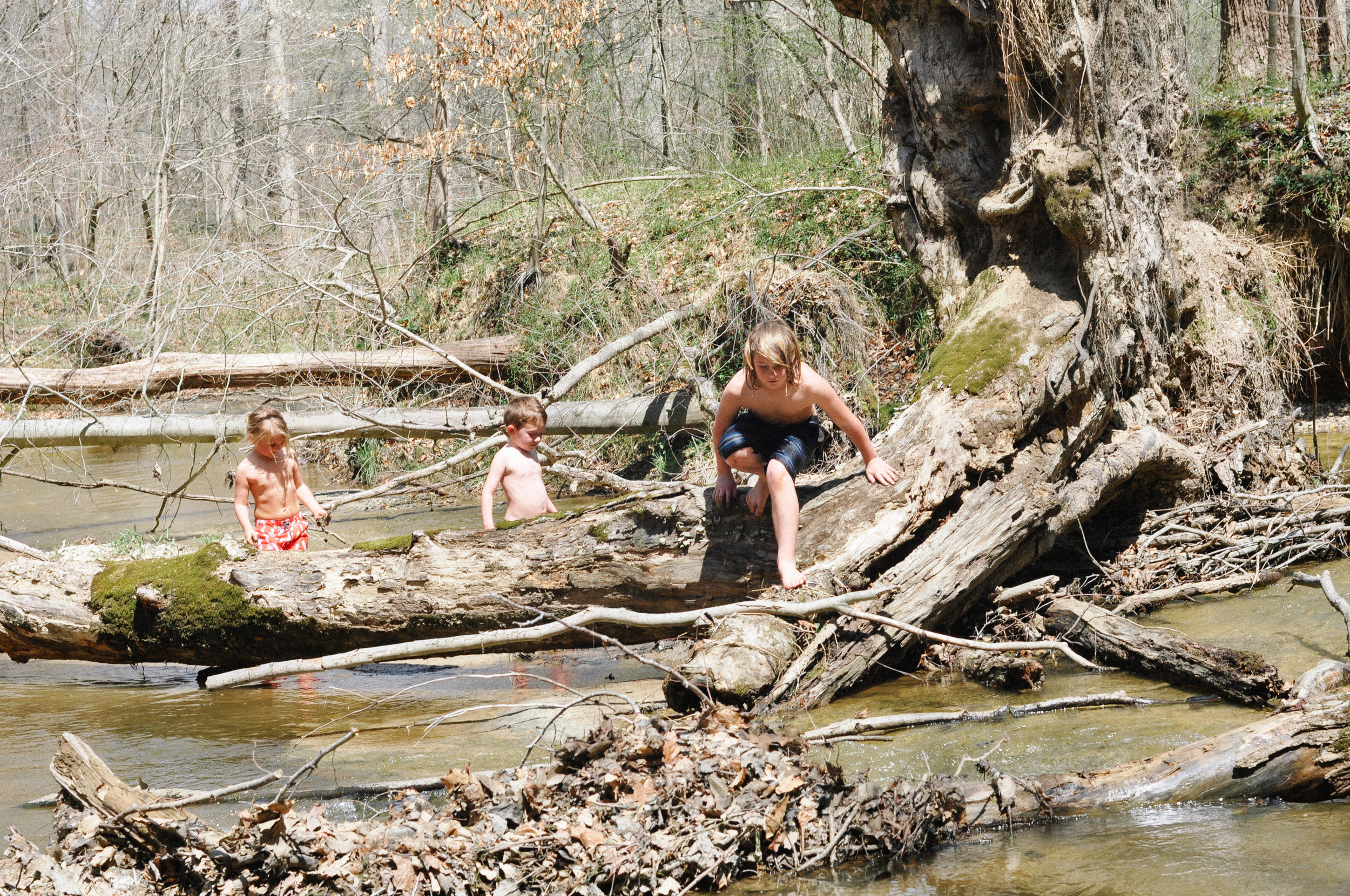 day at the creek 11.jpg