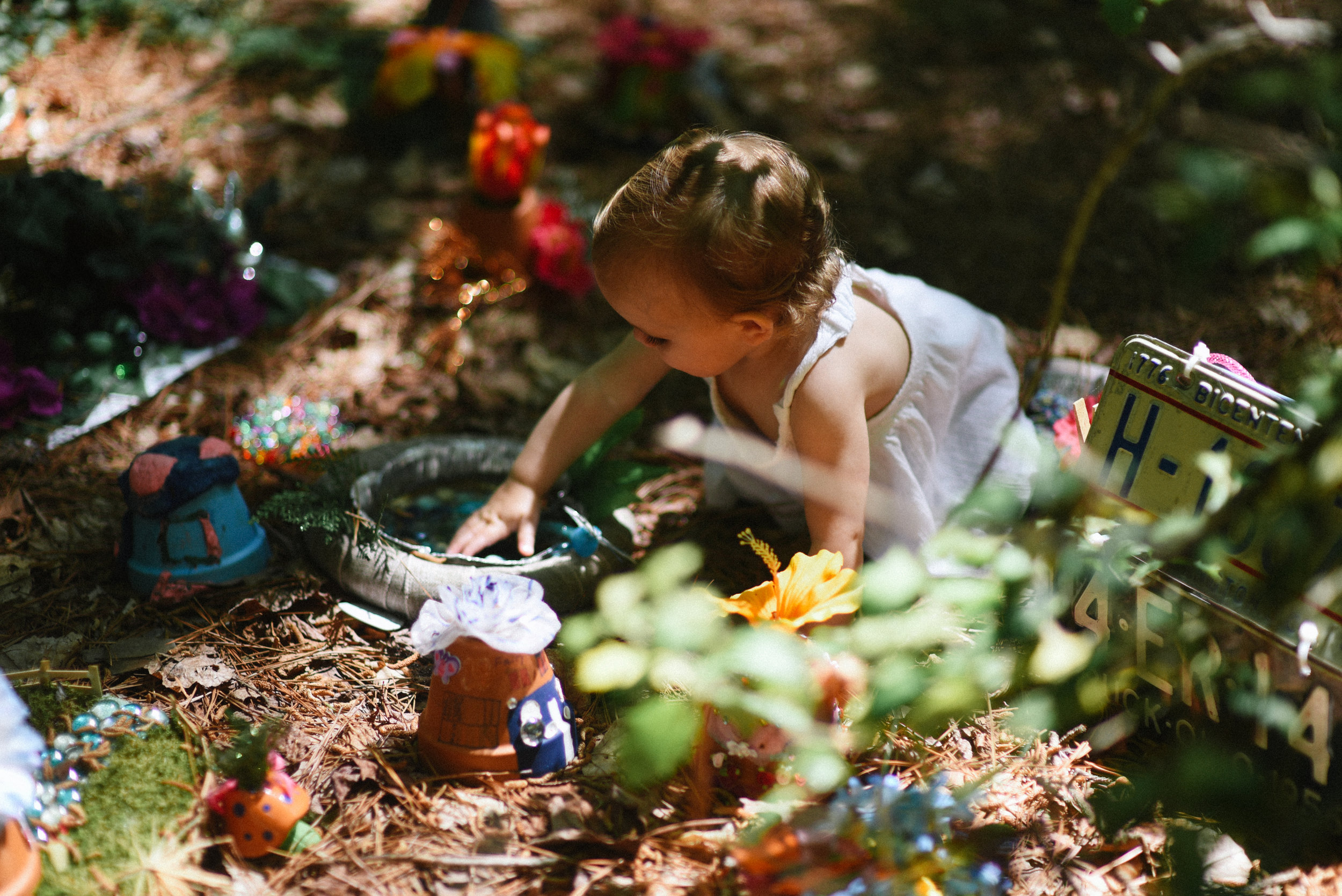 at-annmarie-gardens woodland 4.jpg
