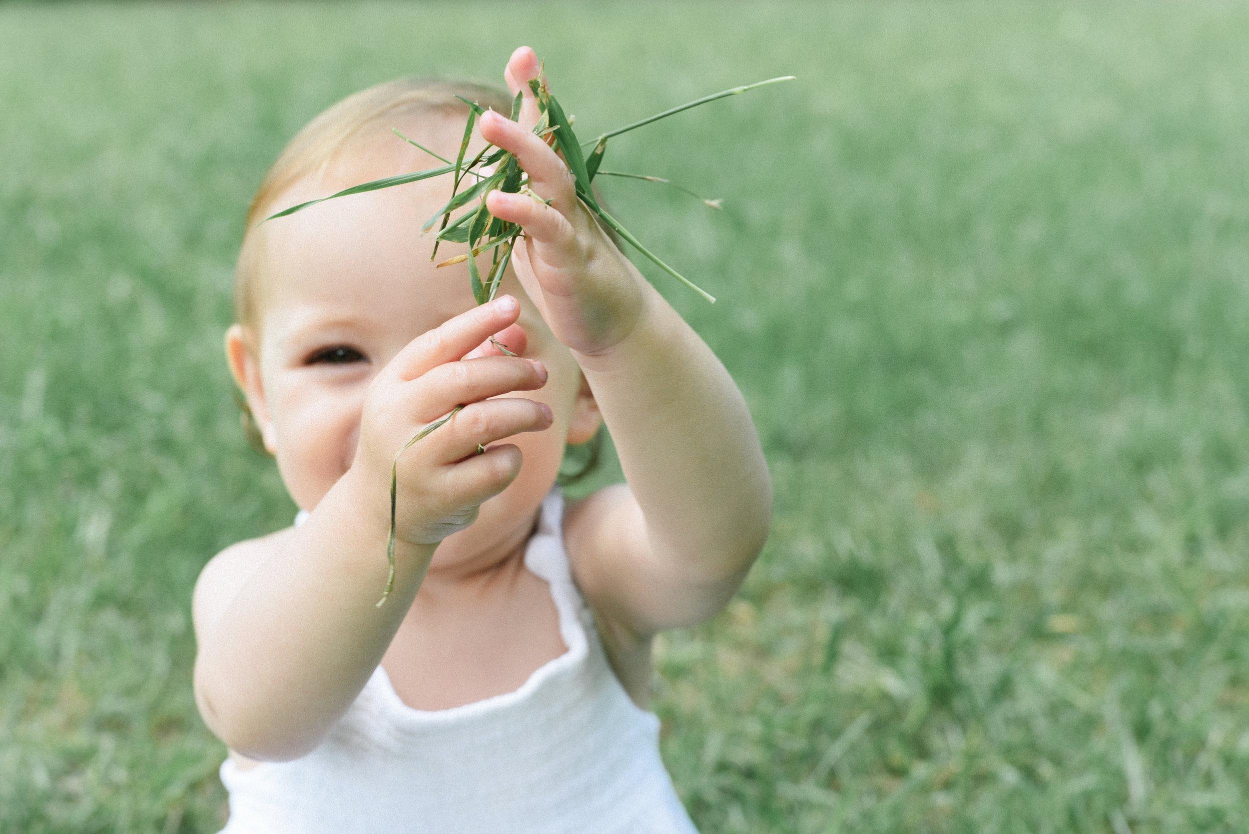 anne-marie-gardens-one-year-photos little hands.jpg