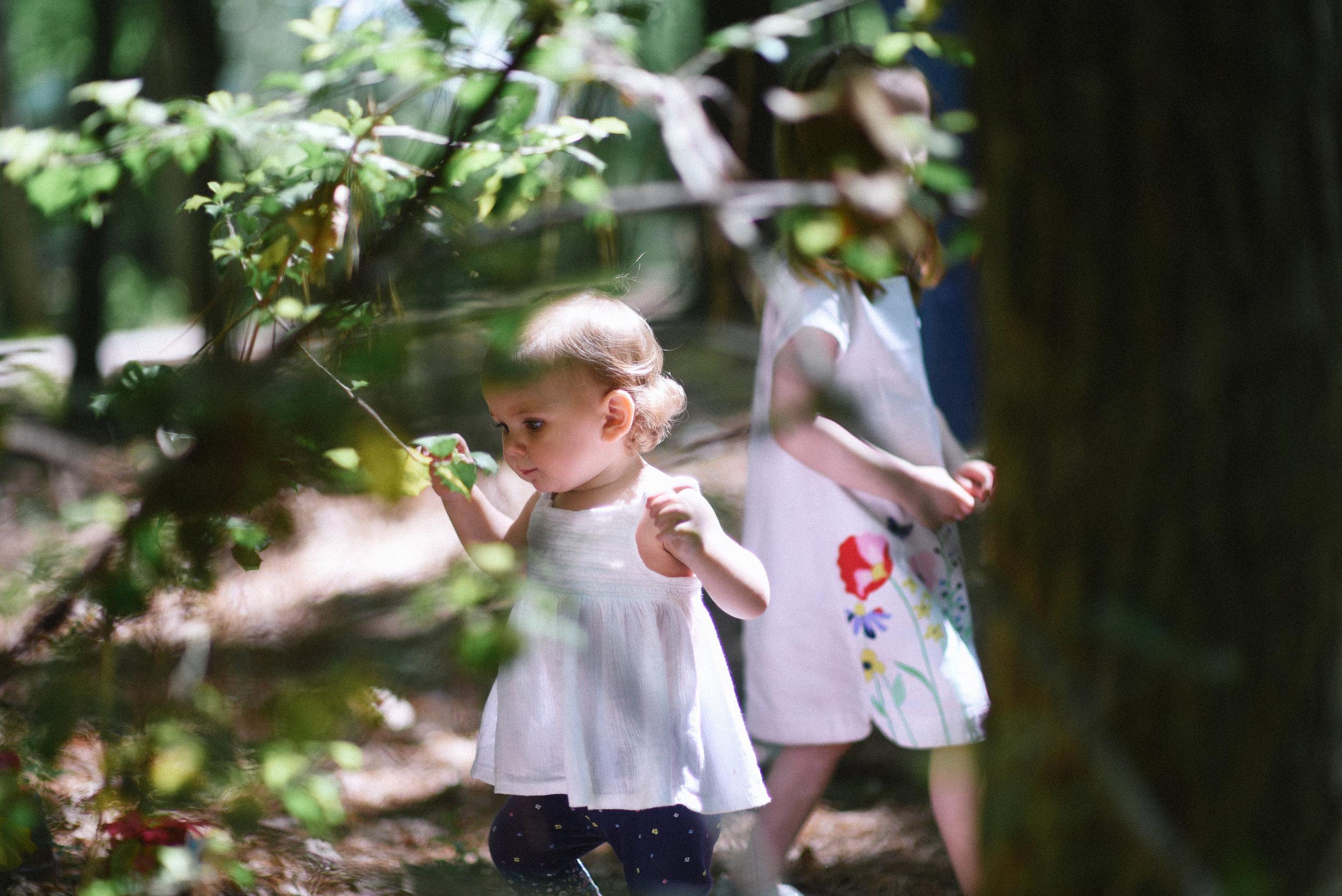 at-annmarie-gardens woodland 1.jpg