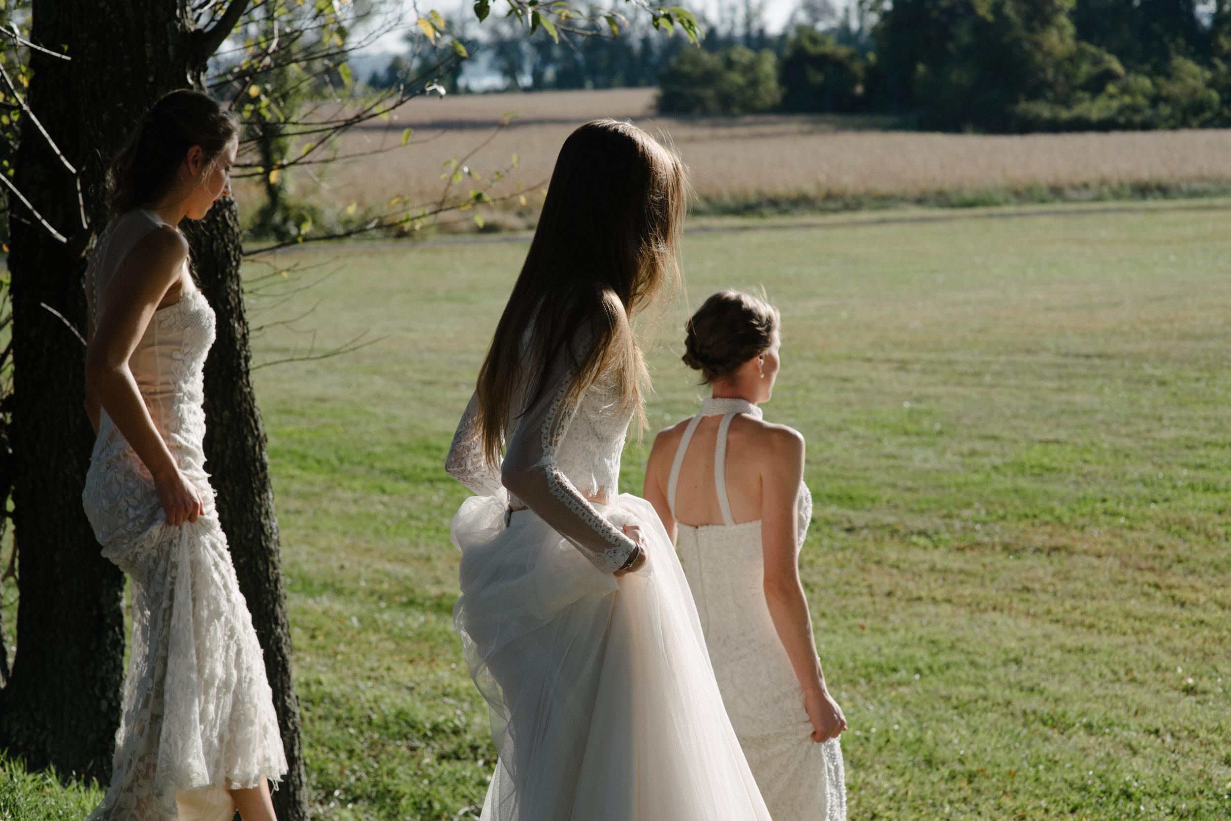 sister wives-3.jpg