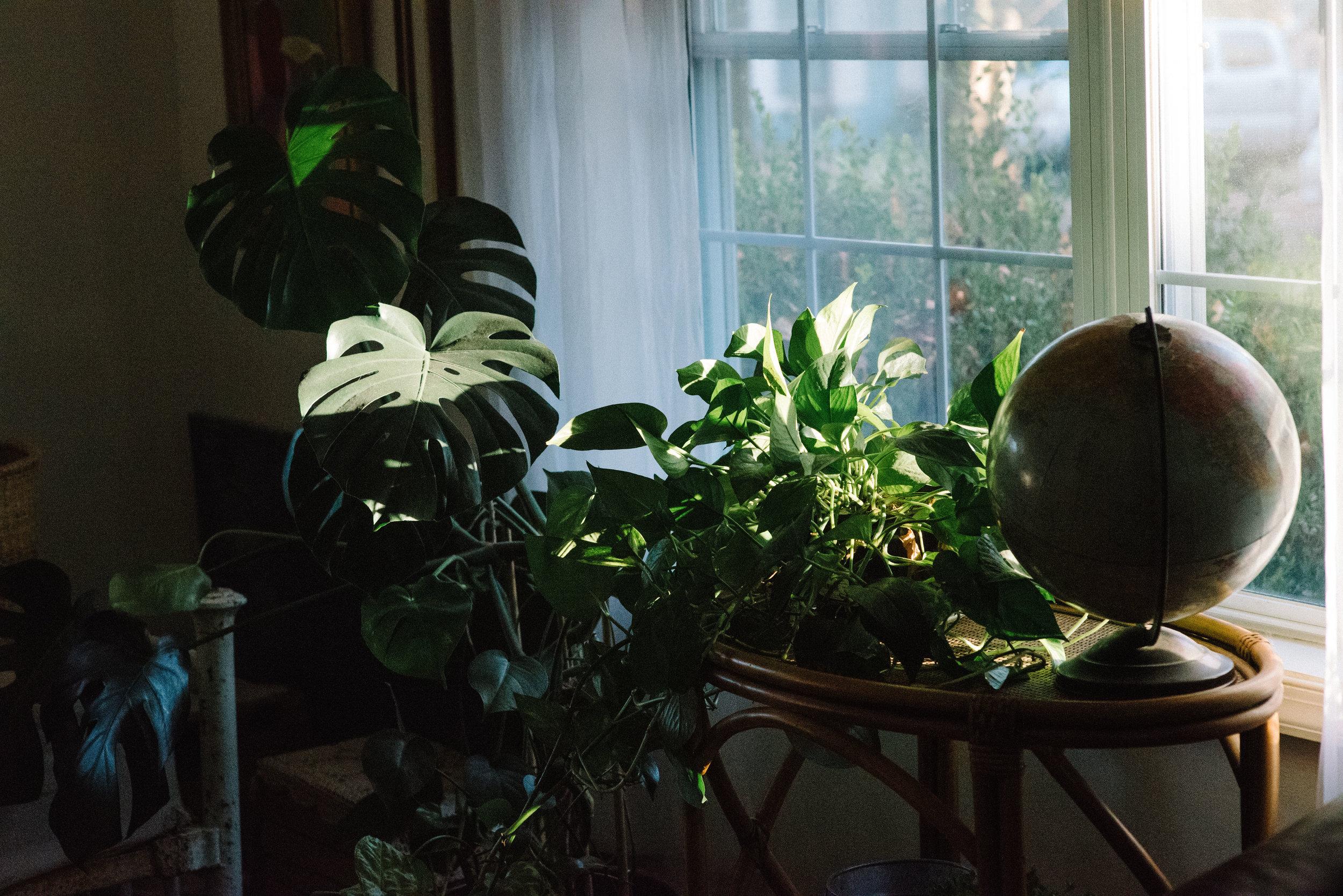 shadow and light-6.jpg