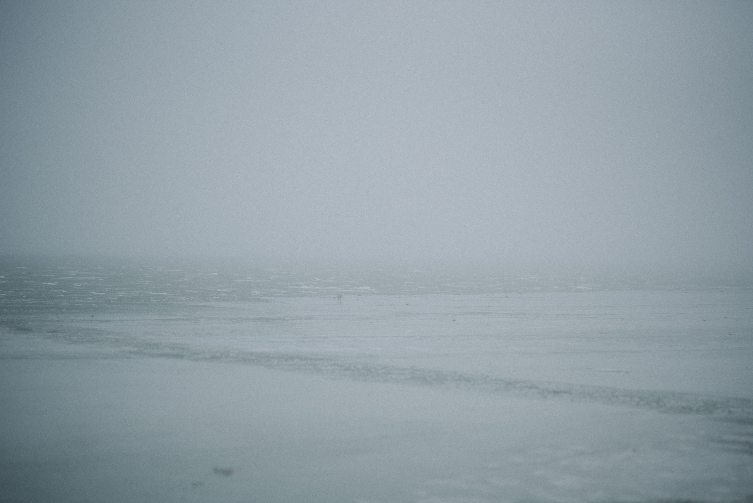 foggy beach-7.jpg