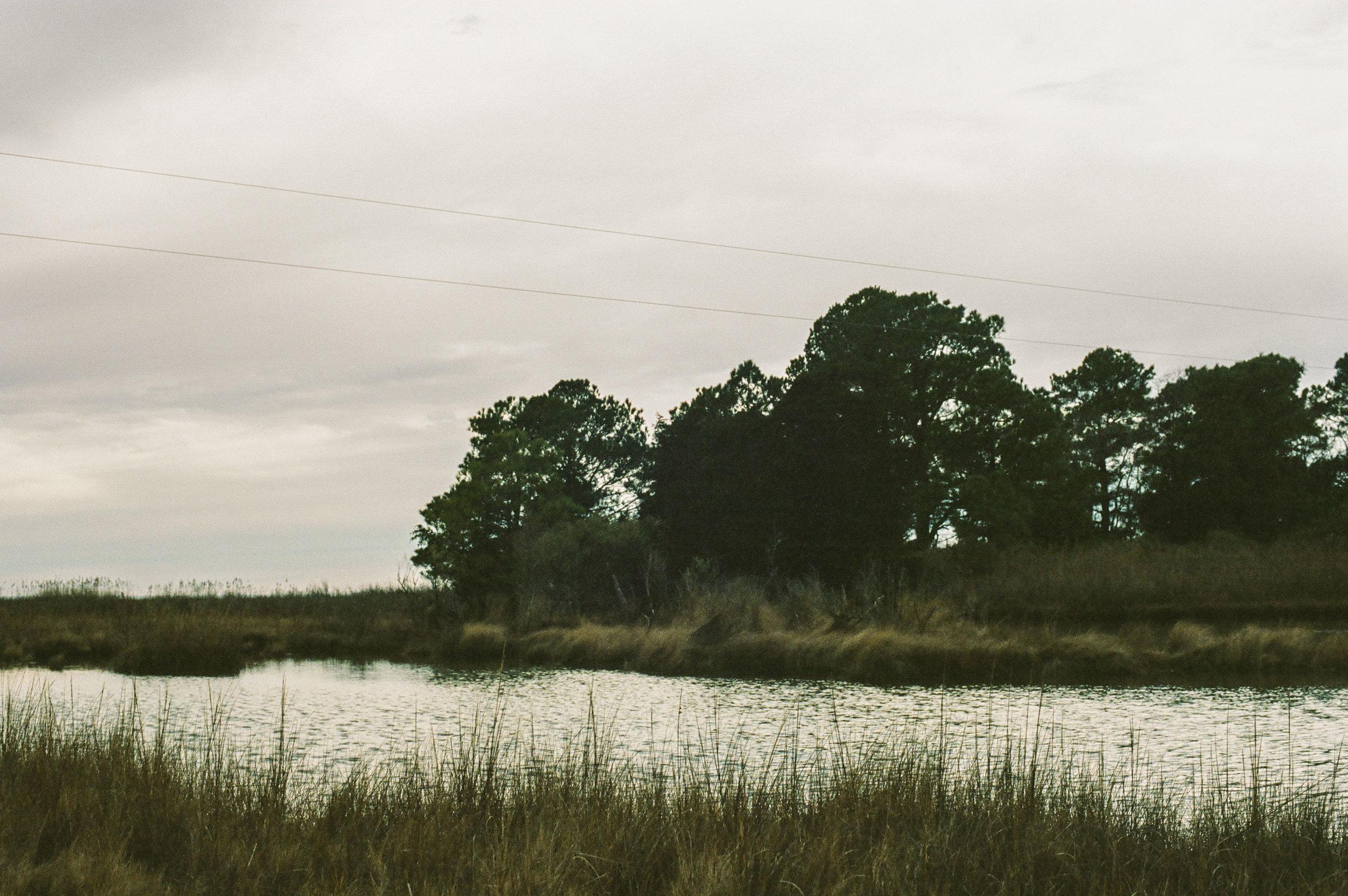 NYE on the marsh-5.jpg
