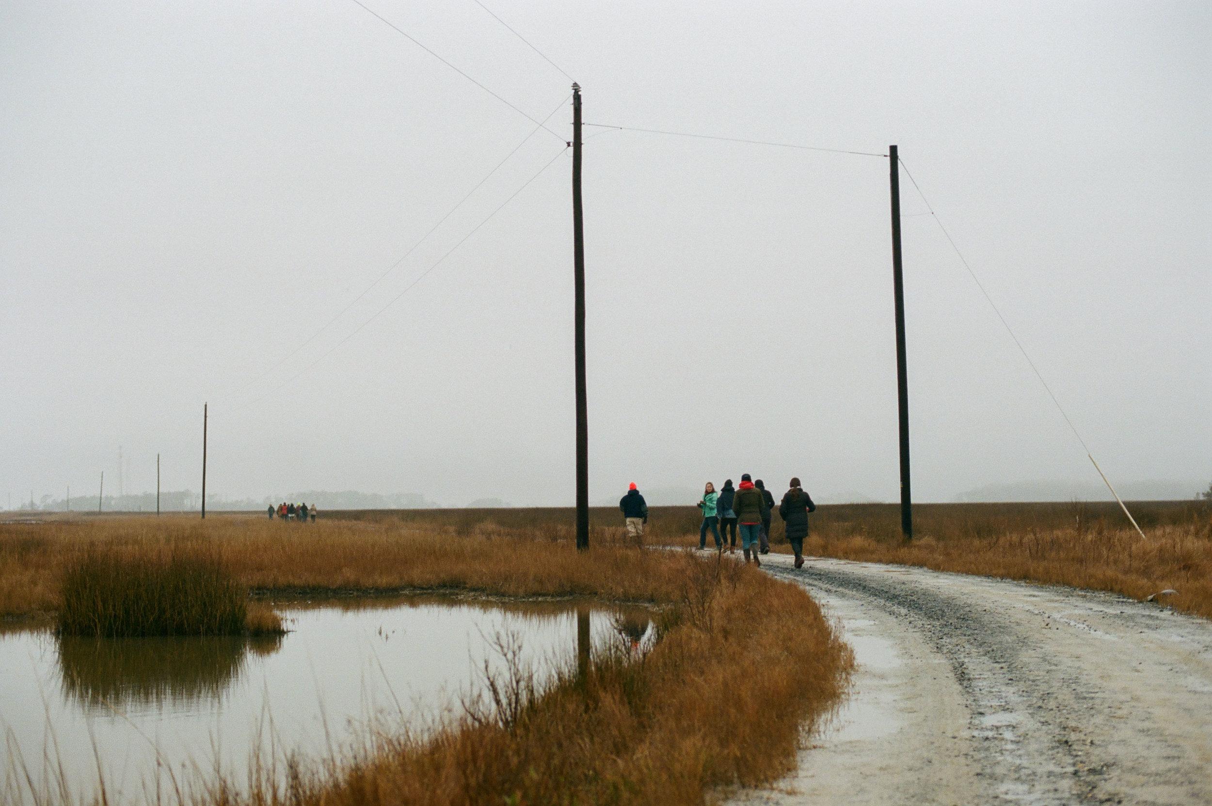 NYE on the marsh-12.jpg