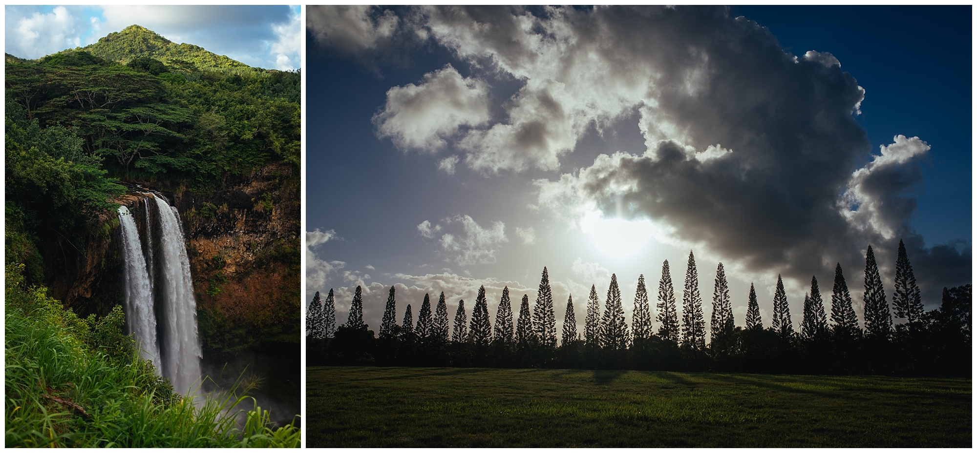 Kauai-Wedding_0010.jpg