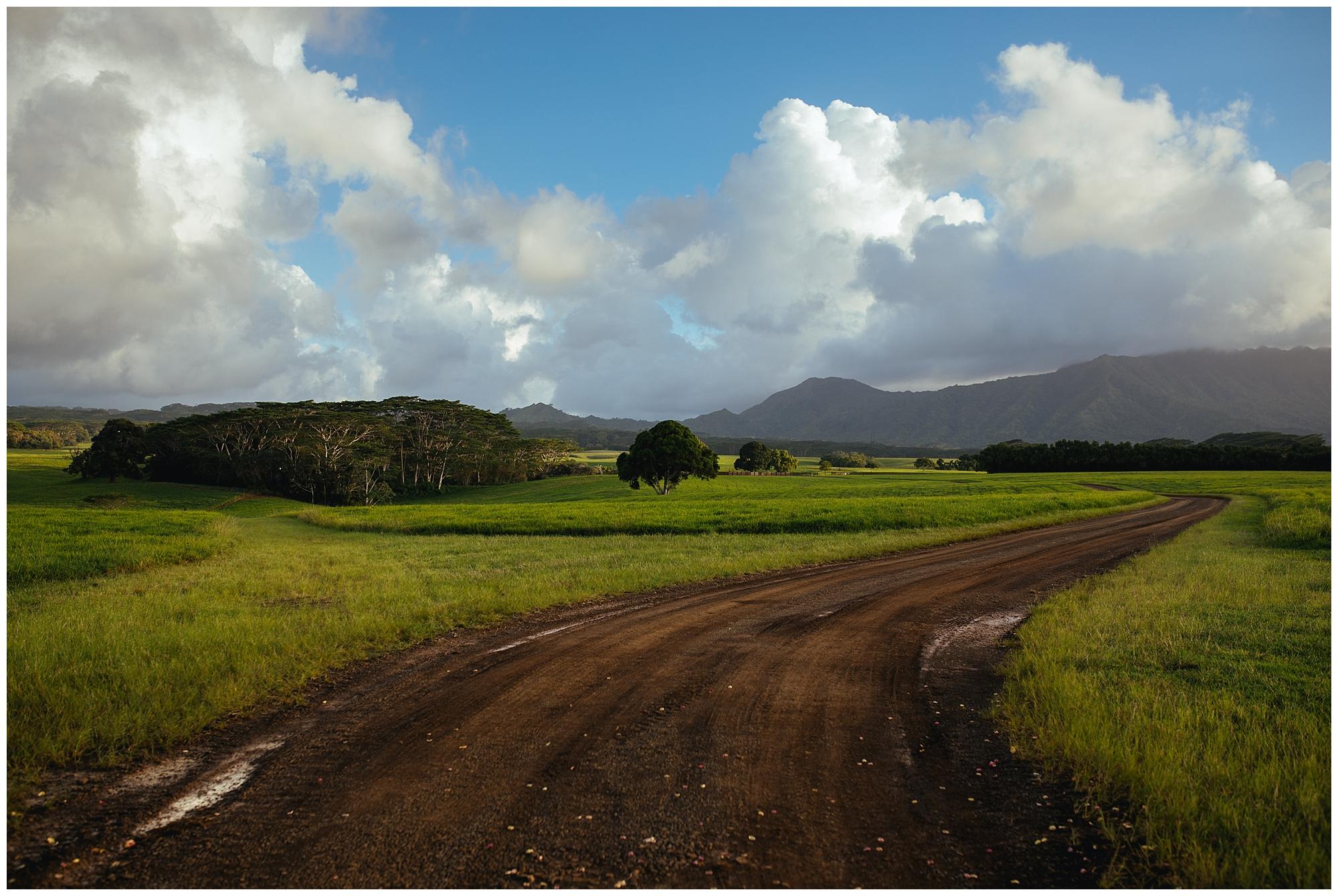Kauai-Wedding_0011.jpg