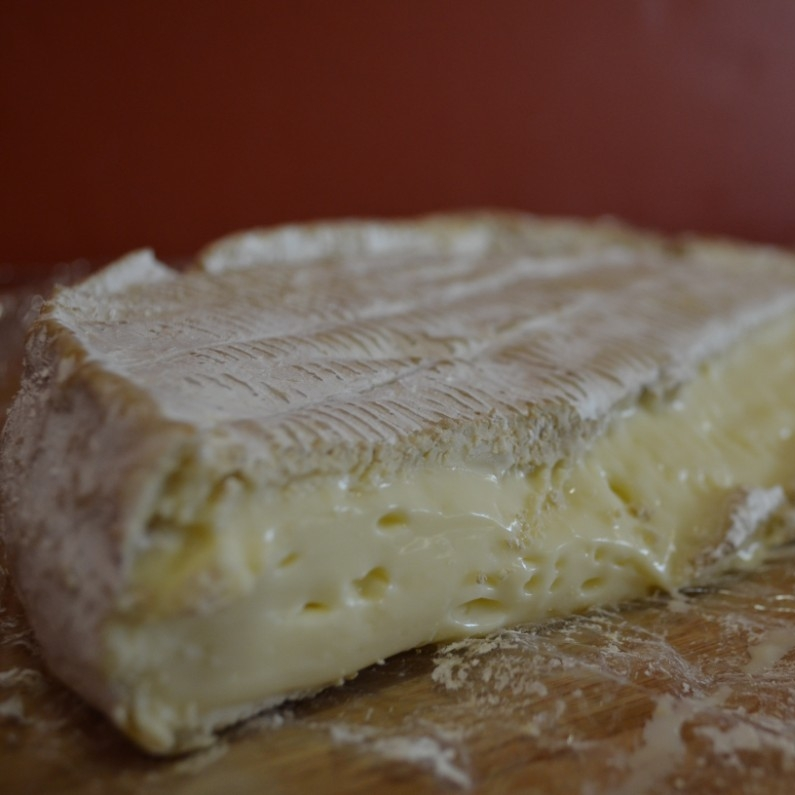 Bloomy Rind Cheese -
